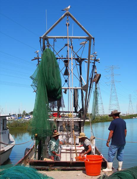 Shrimp Boat Projects / Galveston Bay, Texas