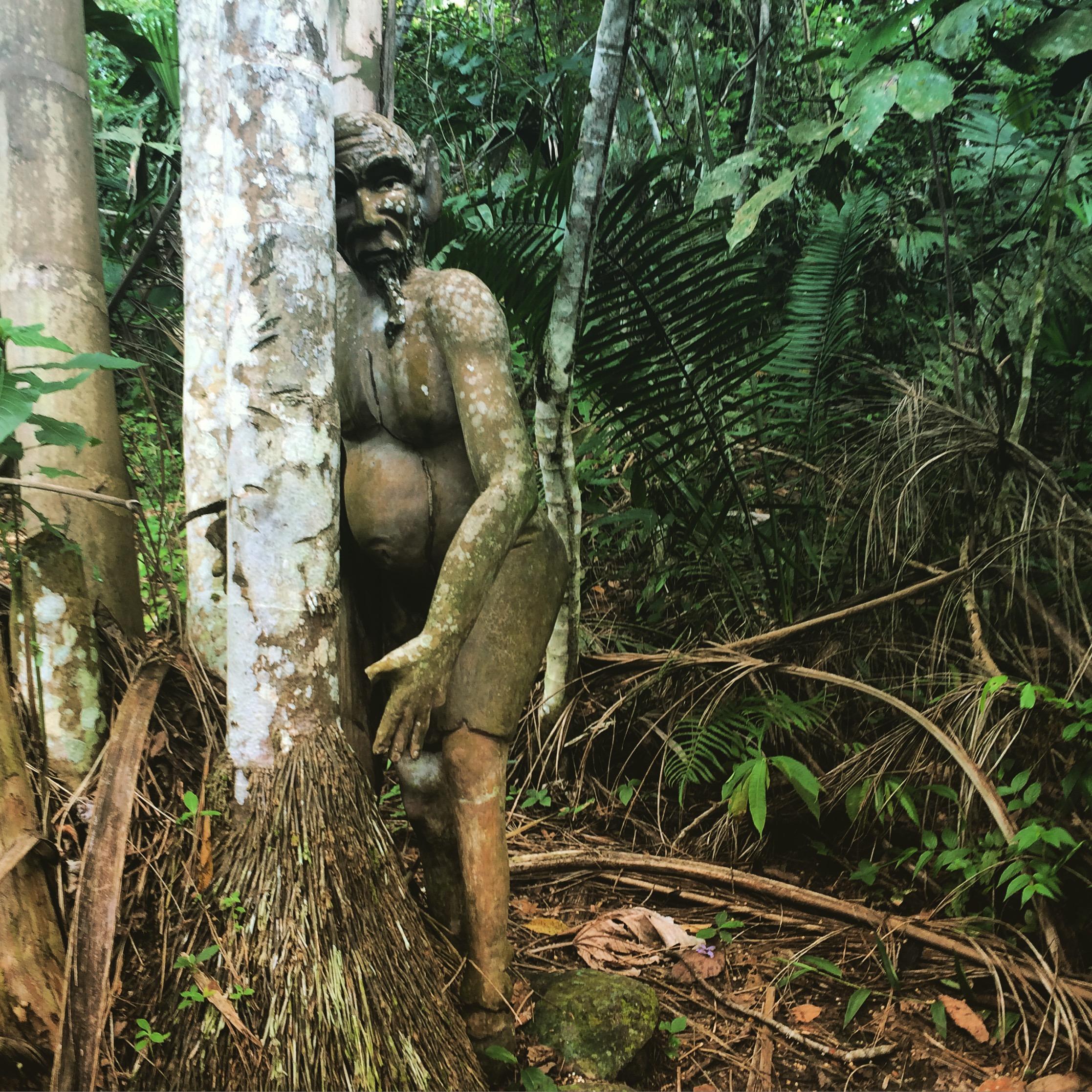 el duende • forest creeper