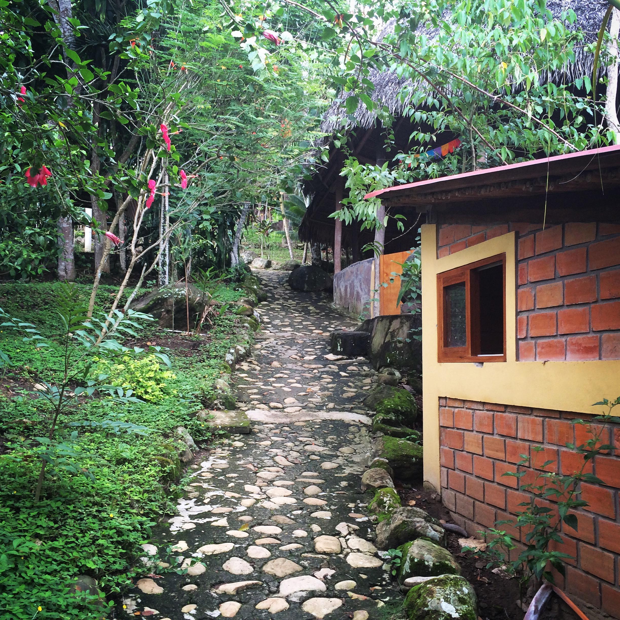Stone path at Yacumama