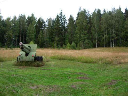 yard cannon