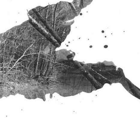 Noelle-Rasmussen-Absence-1 - Detail.jpg