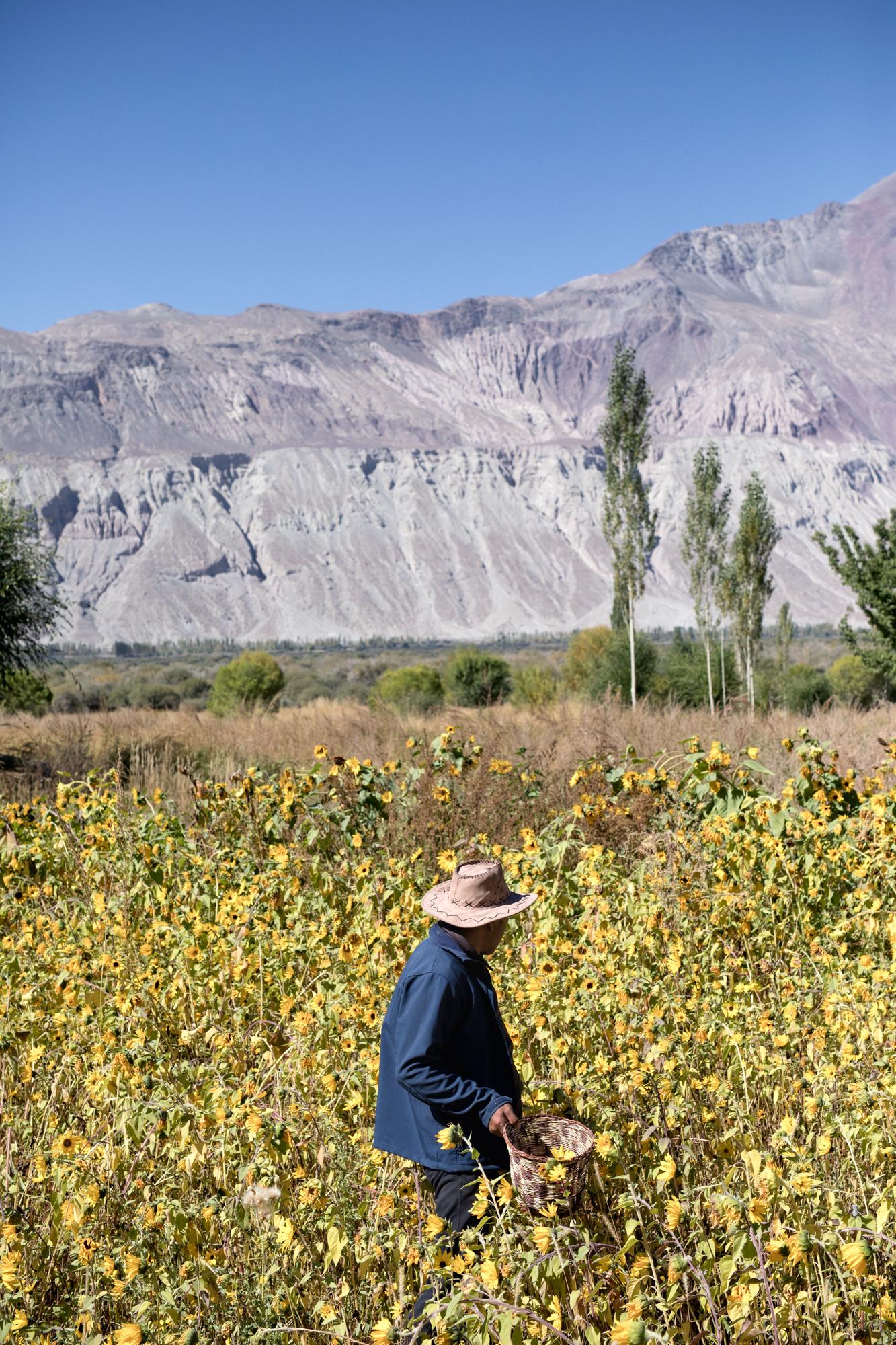 Land of High Passes - Jody Daunton - (5 of 7).jpg