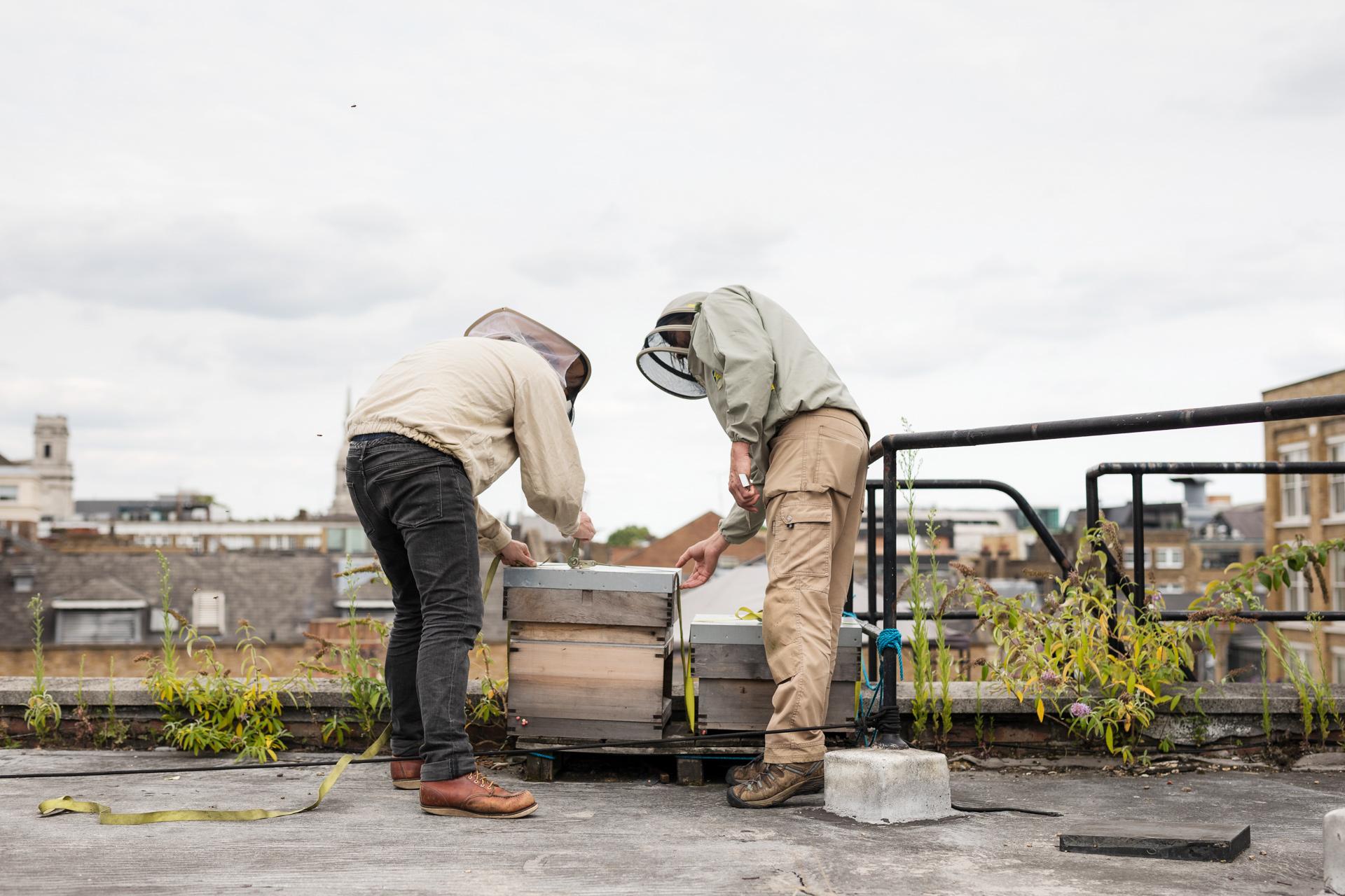 Urban-BeeKeepers---Jody-Daunton---(5-of-19).jpg