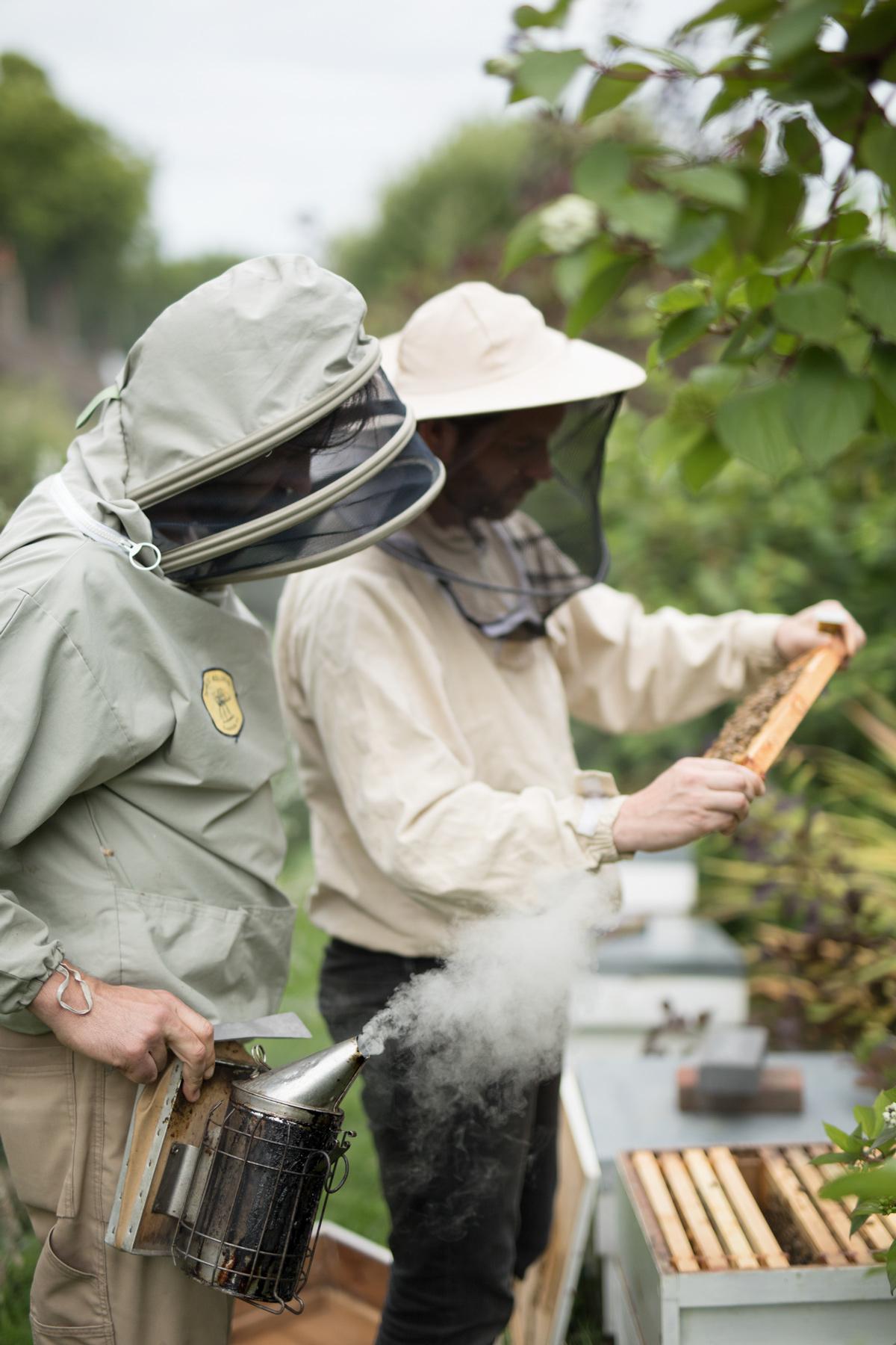 Urban-BeeKeepers---Jody-Daunton---(8-of-19).jpg