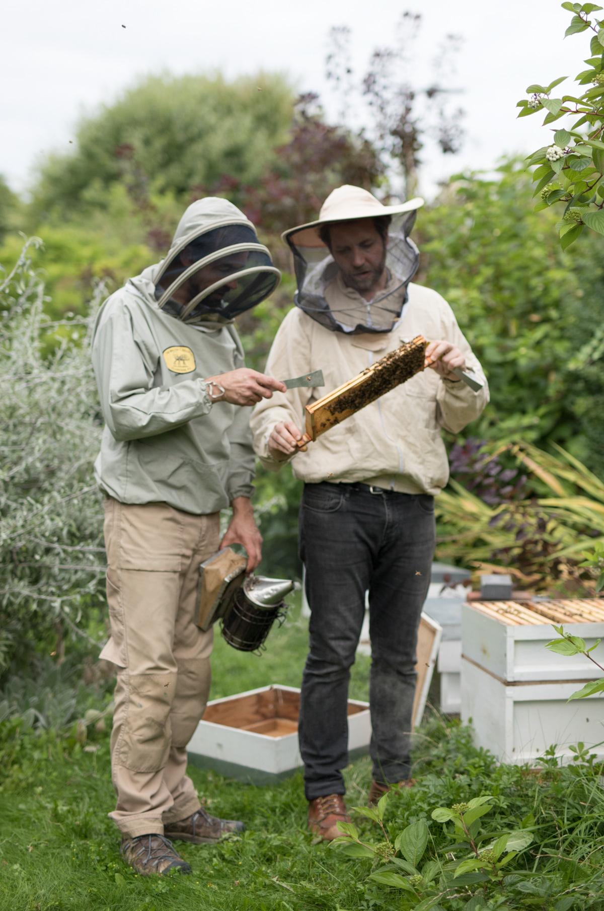 Urban-BeeKeepers---Jody-Daunton---(10-of-19).jpg