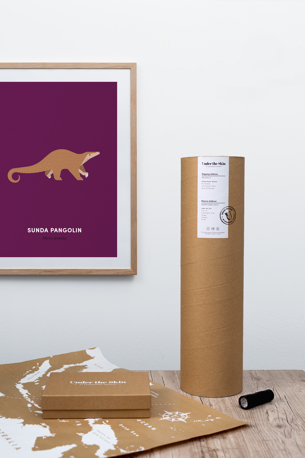 Pangolin - Box Set Framed- Print - Under The Skin - Product Photograpy - Cardiff - Jody Daunton - (Low-Res).jpg