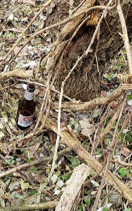Hunter's beer bottle left behind on the fence line.