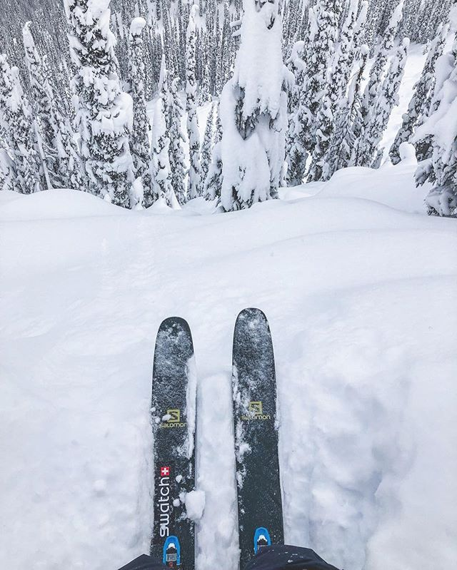 Okay, since I'm horrible at responding to DM's (seriously, stop DM'ing me) and half of the DM's I field these days are related to the SHIFT, shoot your questions, reviews or knowledge about the @salomonfreeski SHIFT binding below. Since it's out and in the public, I'm curious to hear everyone's thoughts so far. @swatchandsports