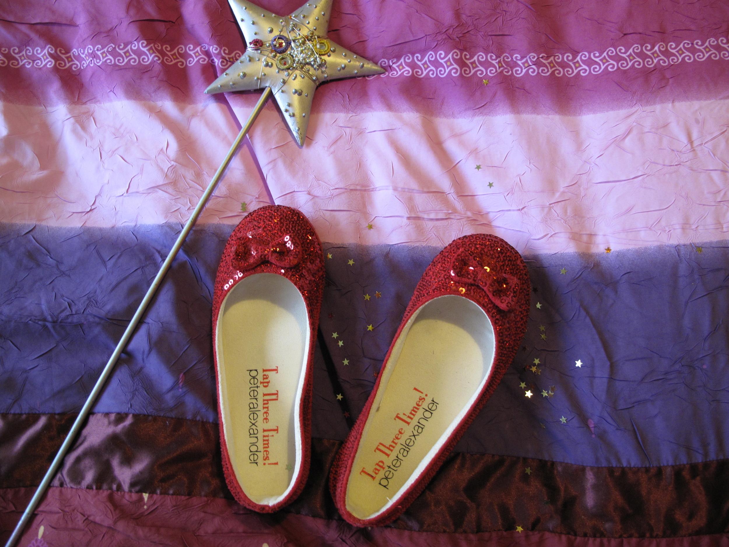 dorothy slippers