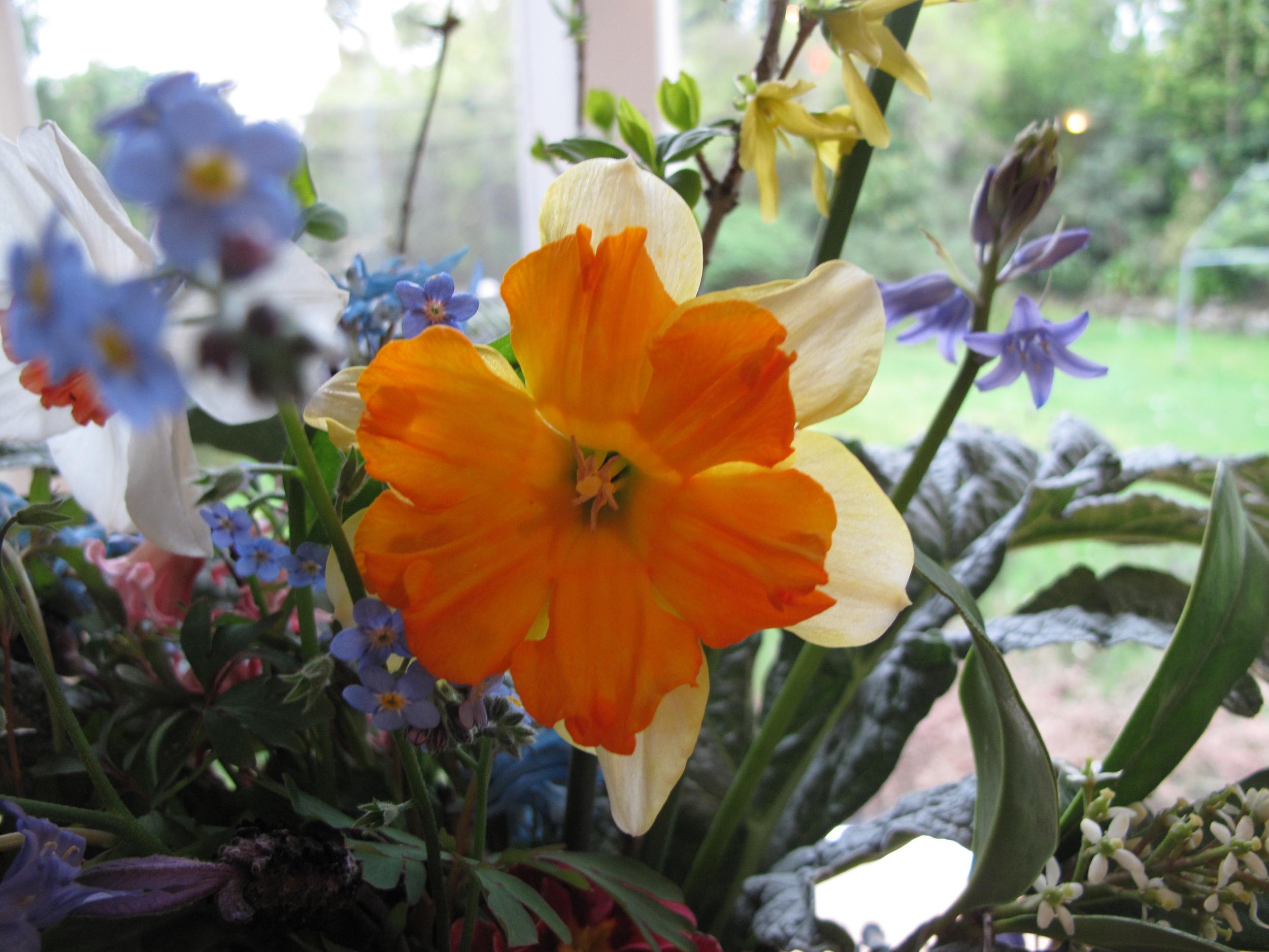 daffodil spring bouquet