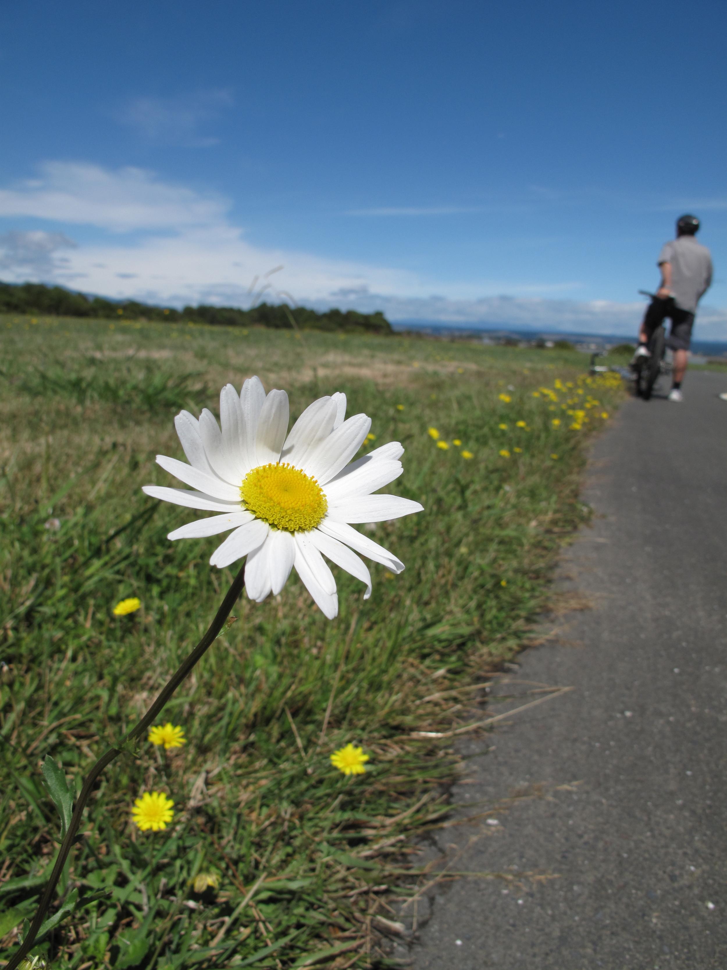Biking in NZ to Mapua Wharf