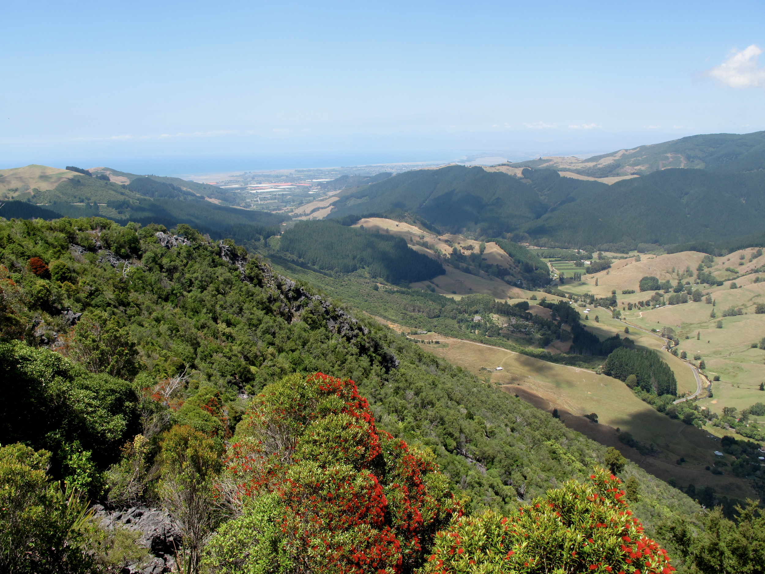 the green hills of Nelson Valley and Pohara in NZ