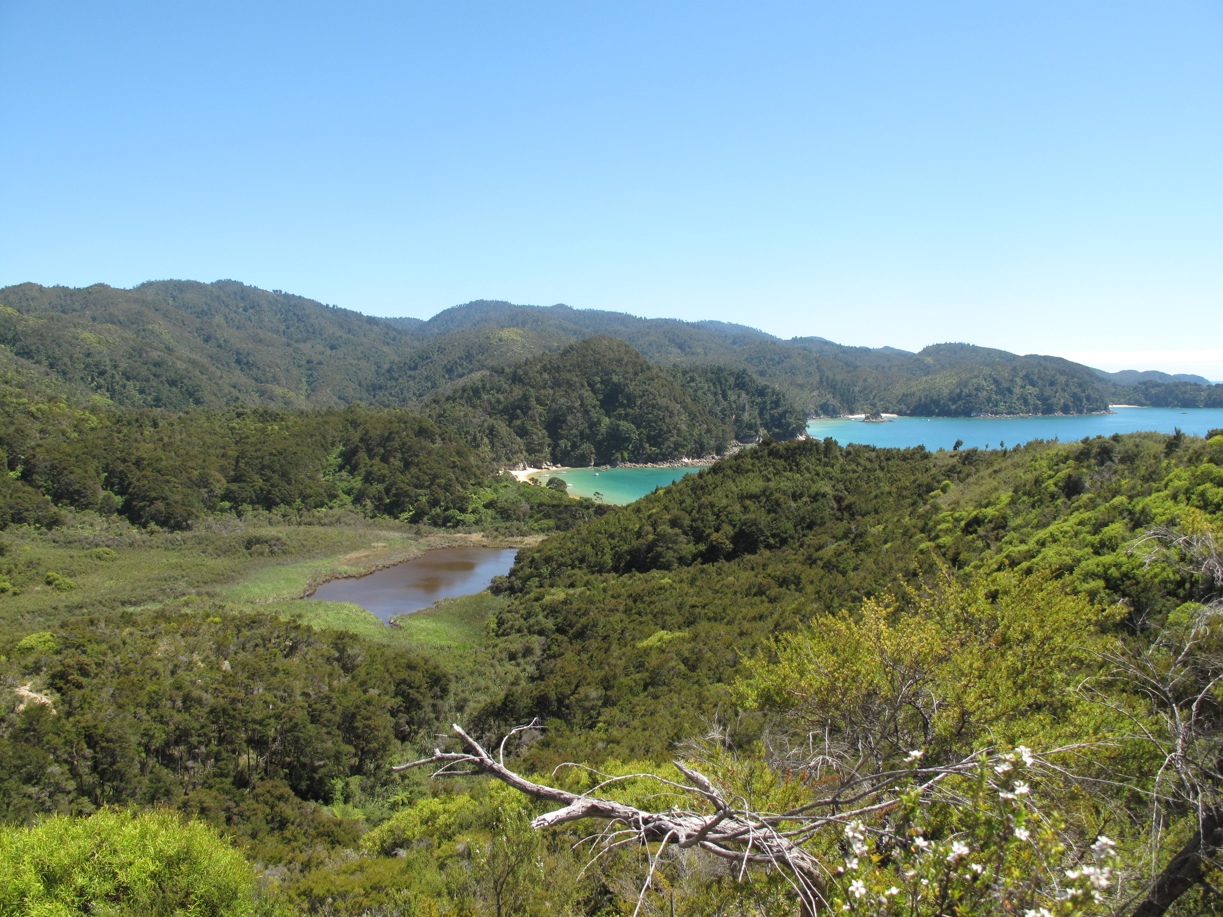 Neverland does exist - in the Able Tasman New Zealand!