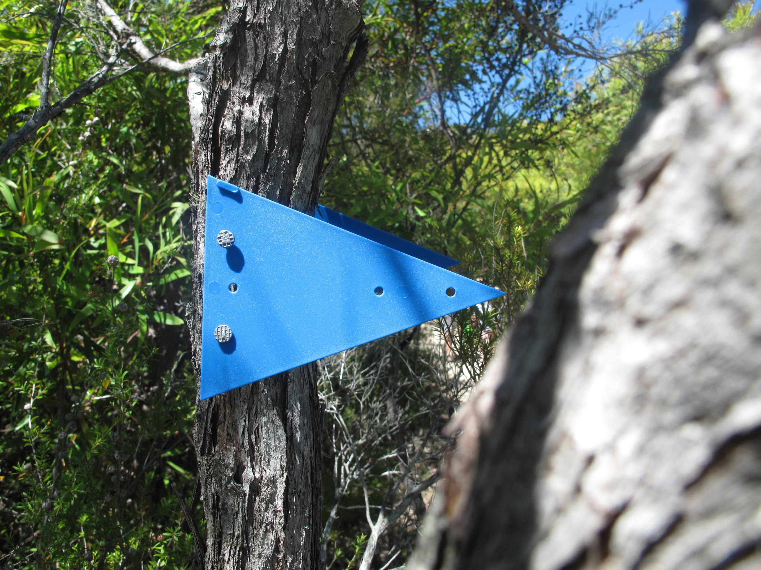 The Able Tasman trail markers