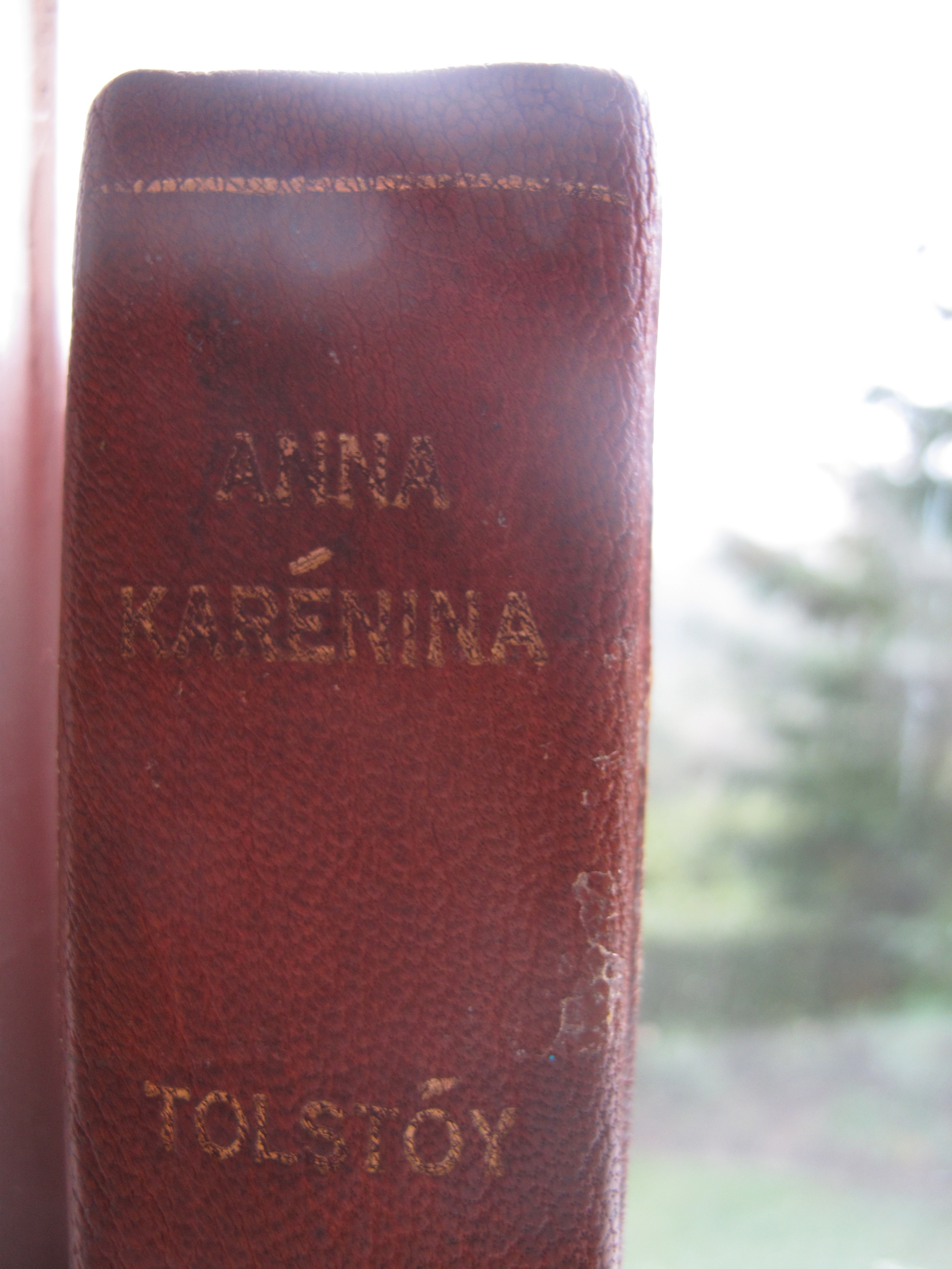 Anna Karenina thoughts on the book
