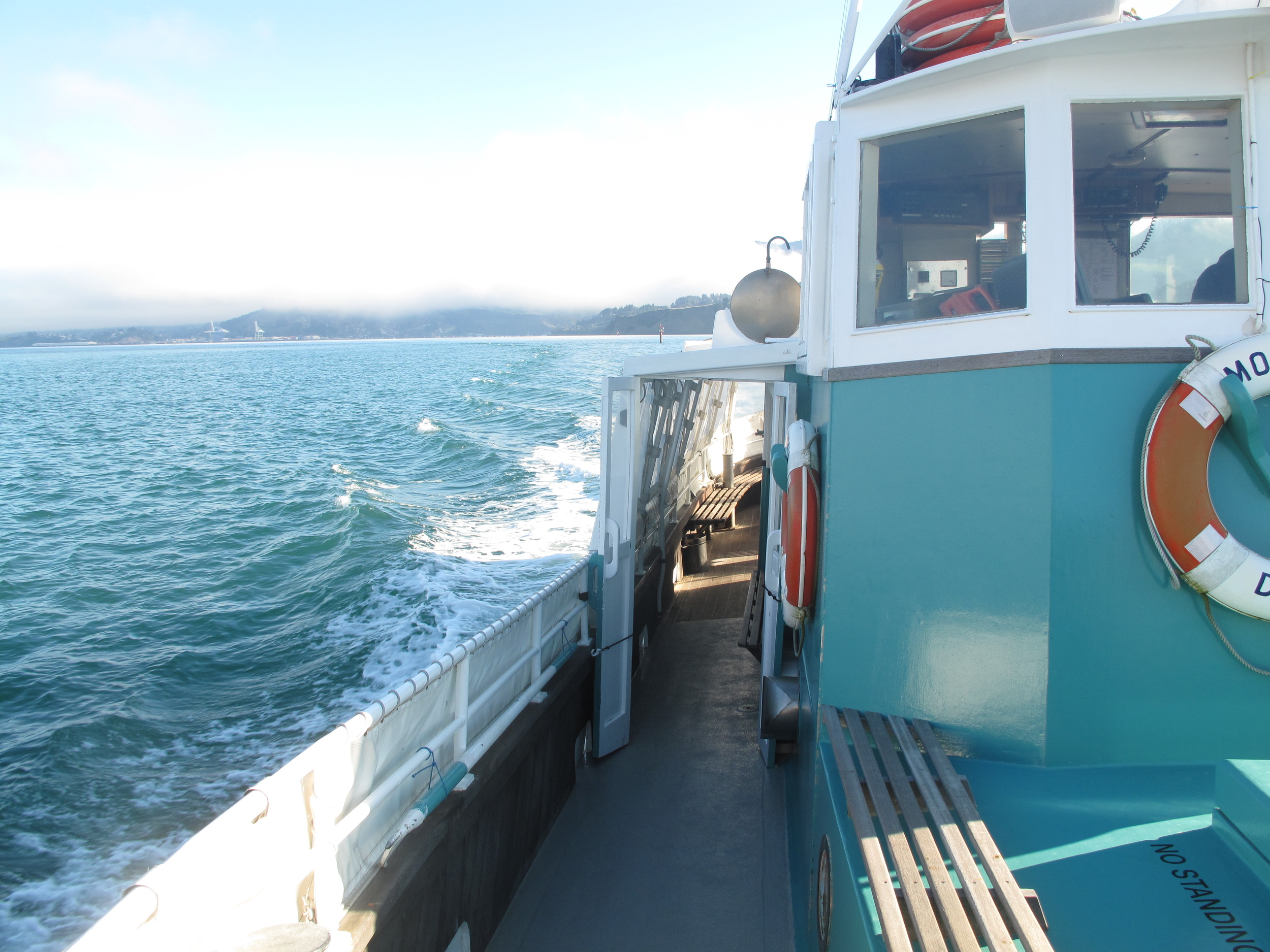 The Monarch cruise Dunedin harbour