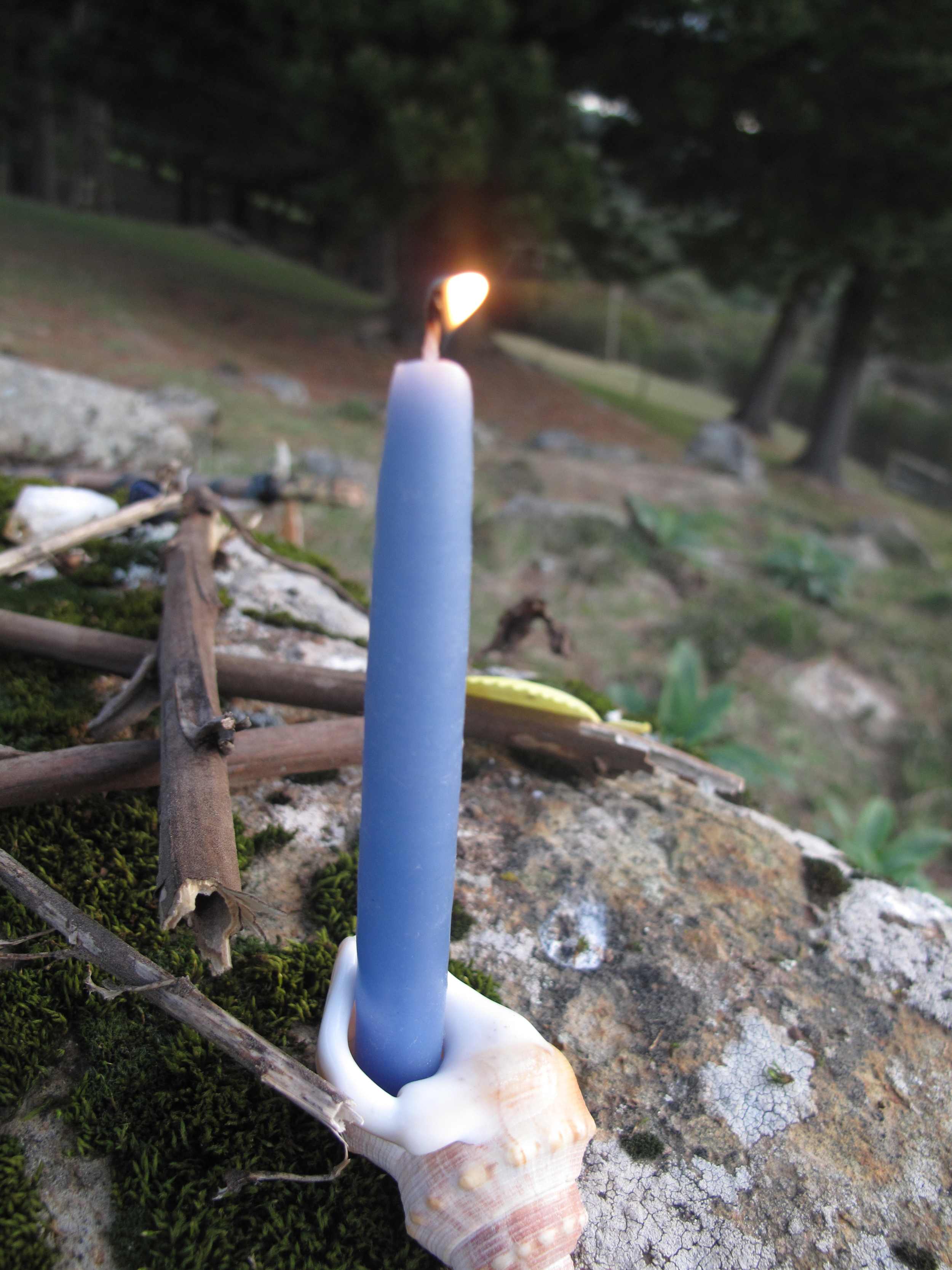 Candle in a seashell on a mossy rock