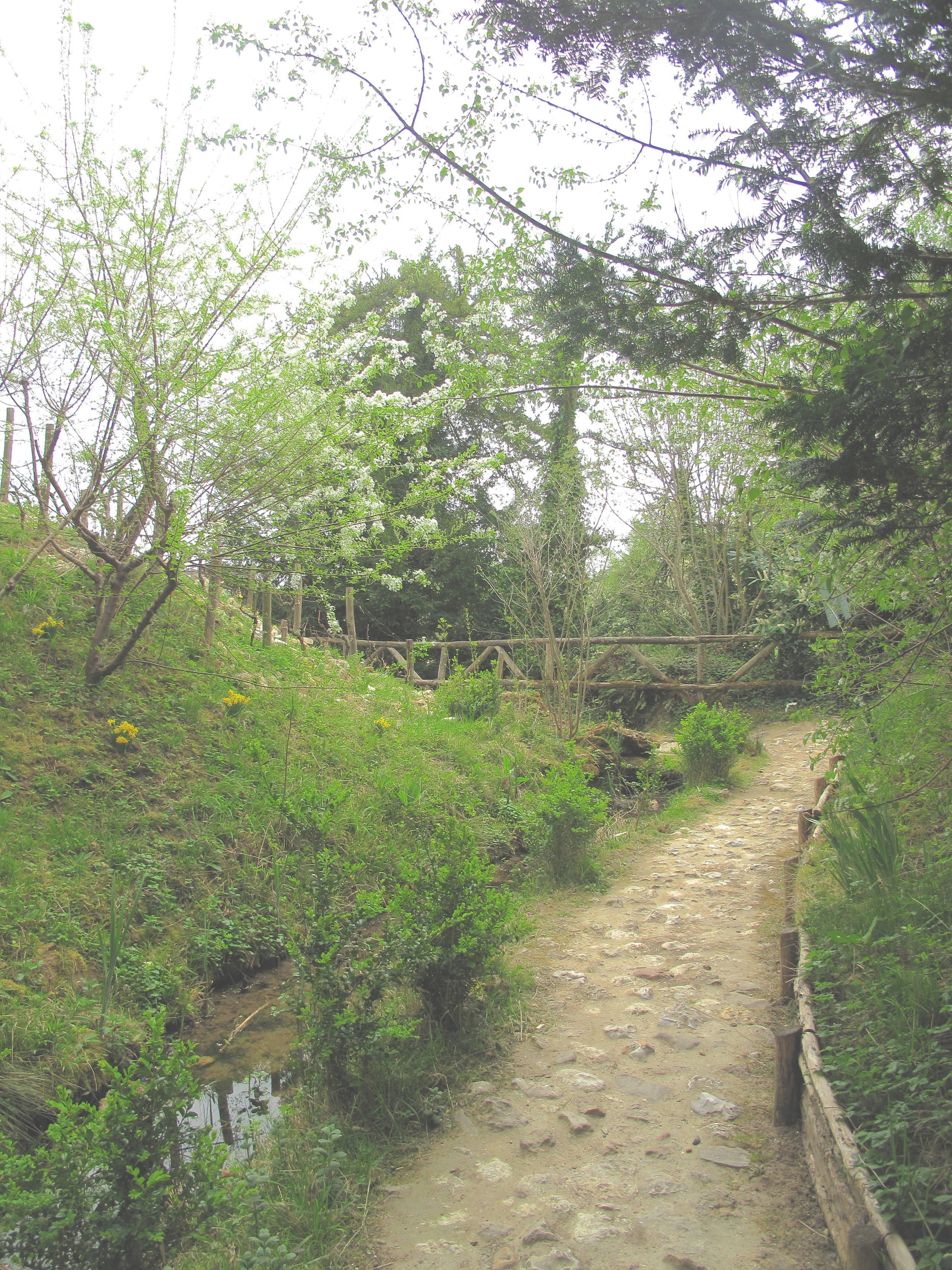 The paths and grottos of Marie Antoinette's English garden
