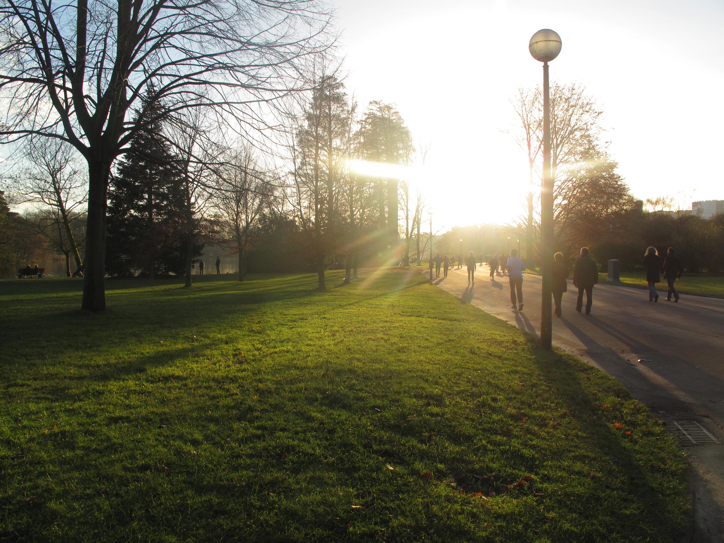 Grasses and paths at Parc de la Tête d'Or