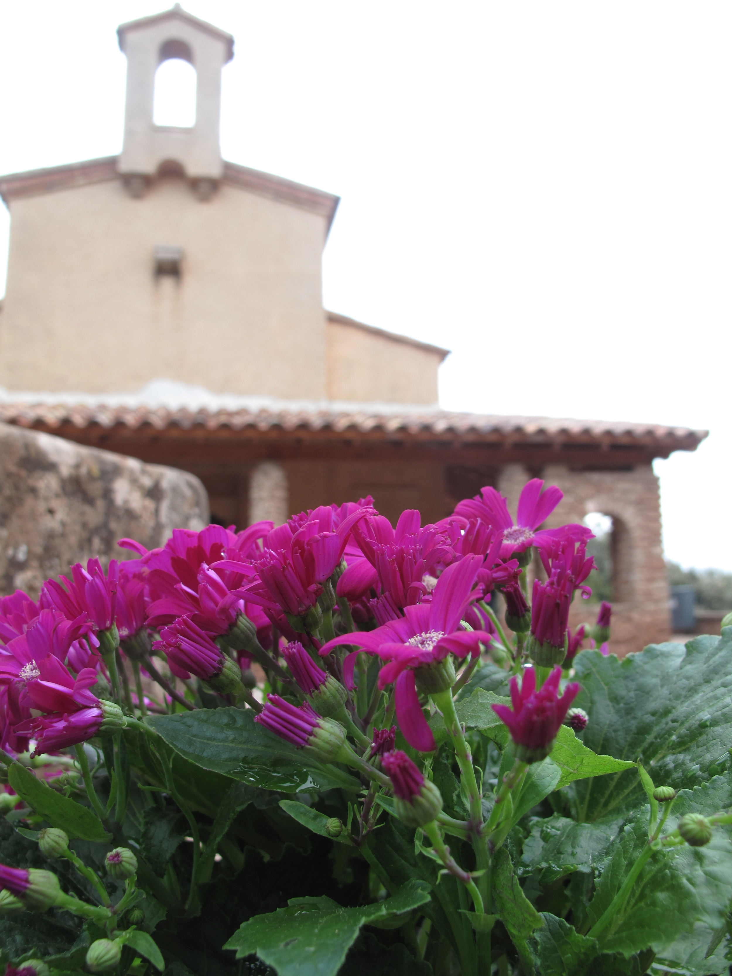Small building of the monastery on the mountain of Montserrat