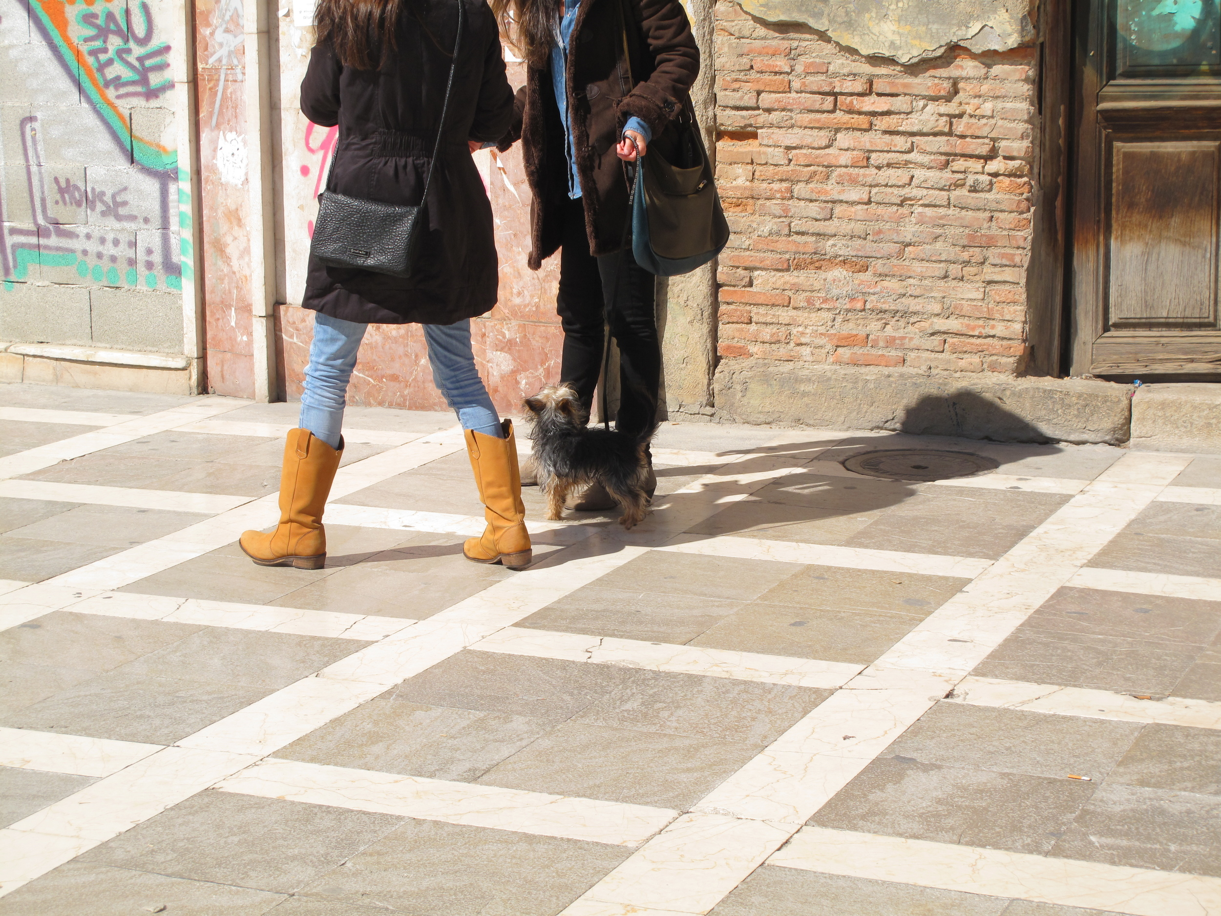 Two women walking a small dog in the streets of Granada