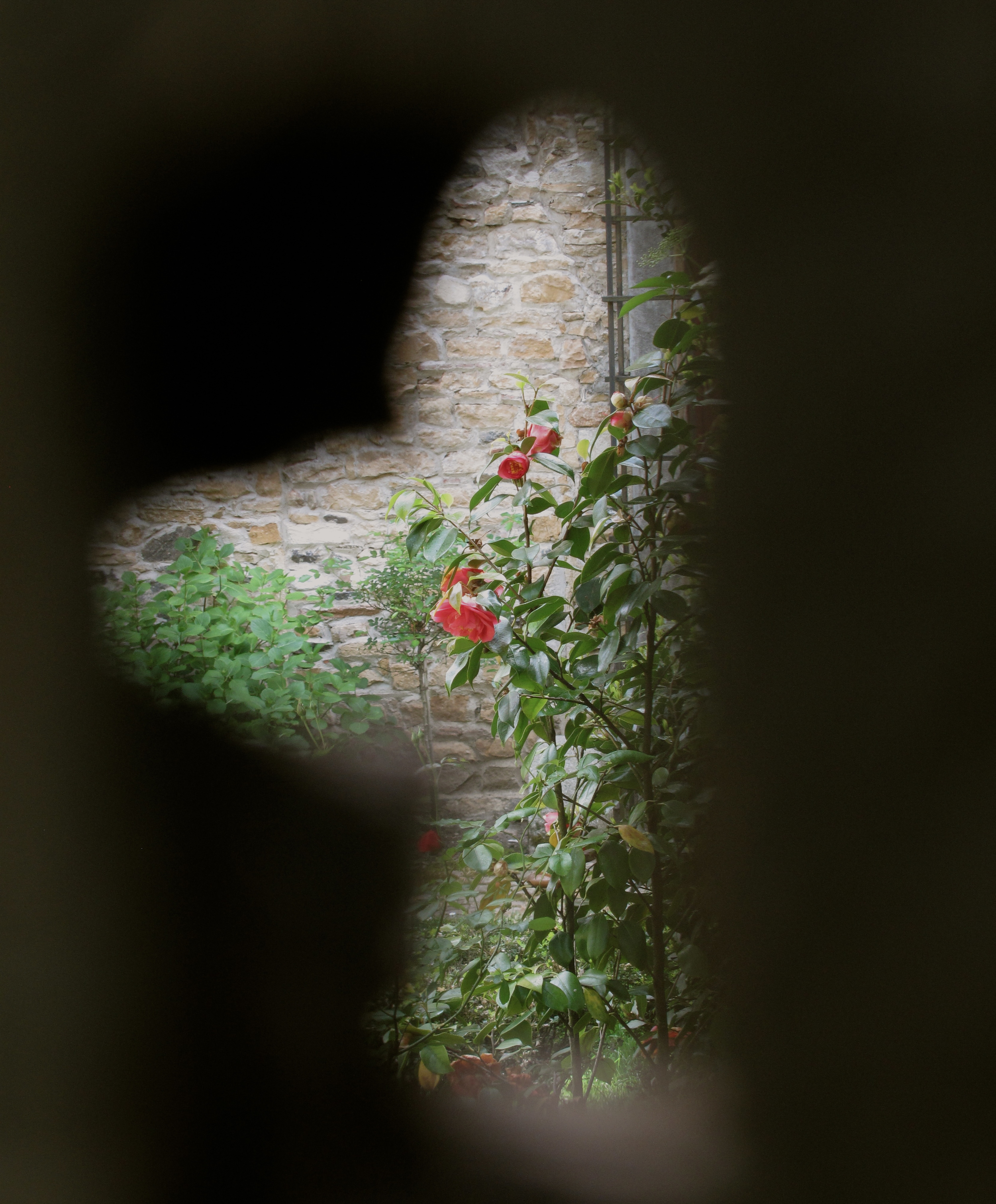 Spying through a keyhole into a garden of roses on a hidden island in France
