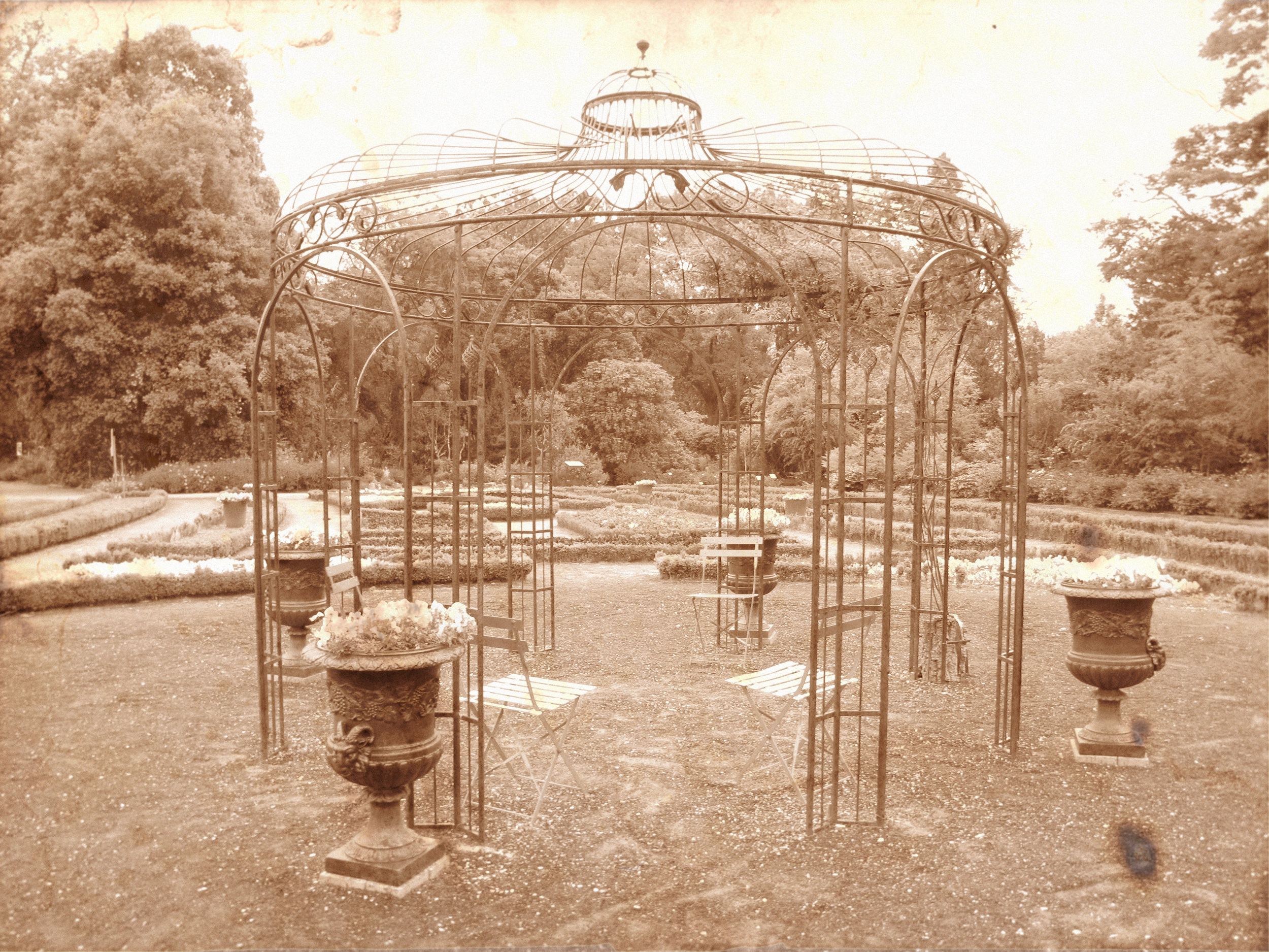 Rose trellis pagoda in old Victorian style photo