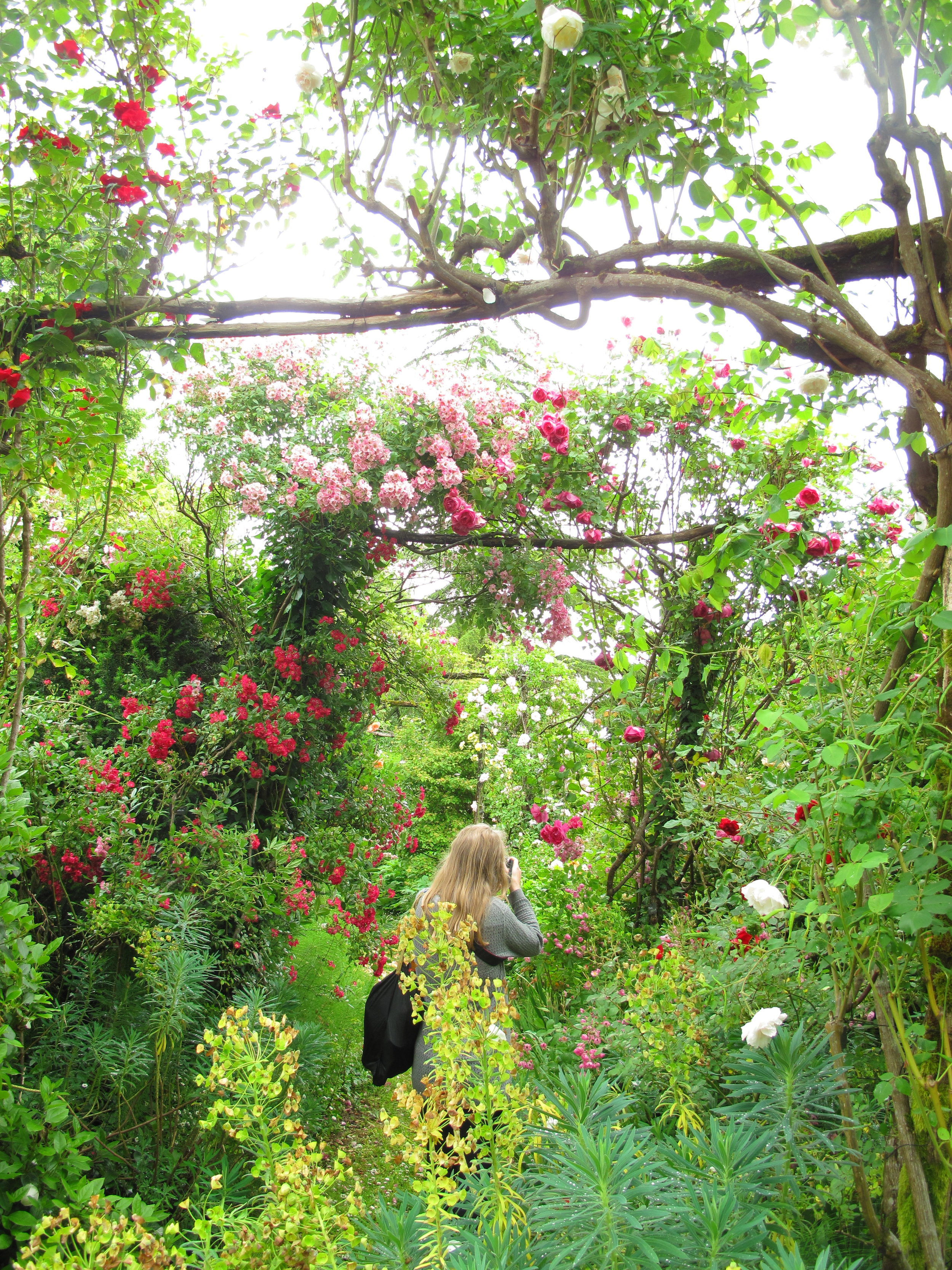 Lost in the roses of the Jardin de Boissonna