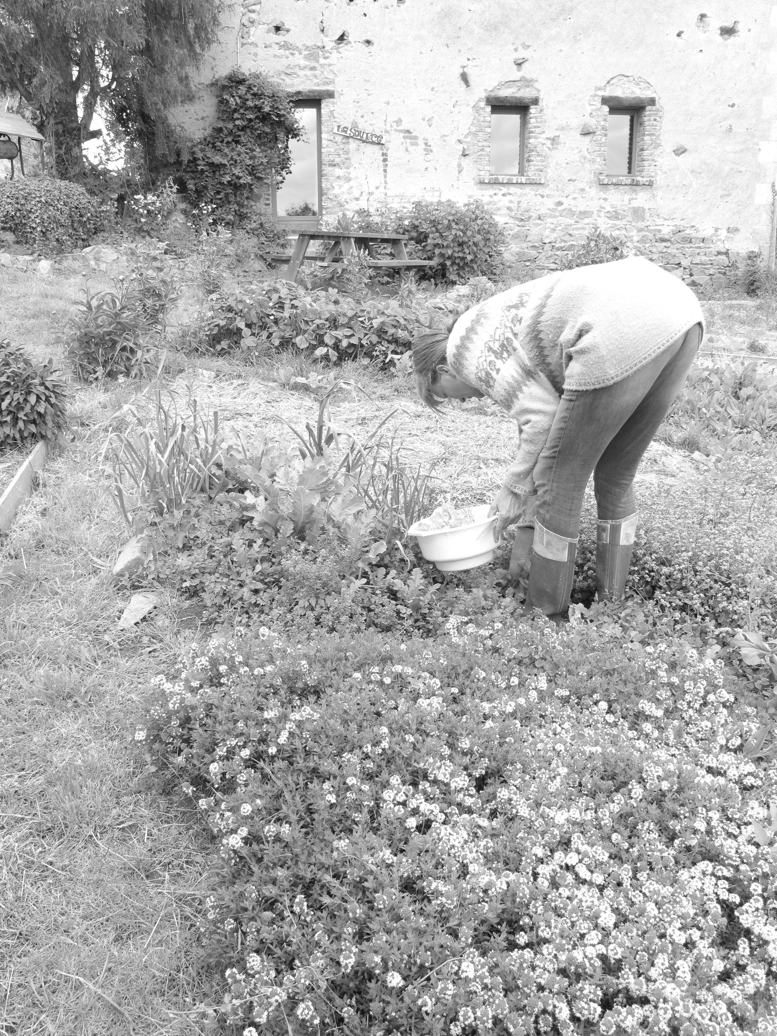 Mariken in her veggie garden at Brenazet