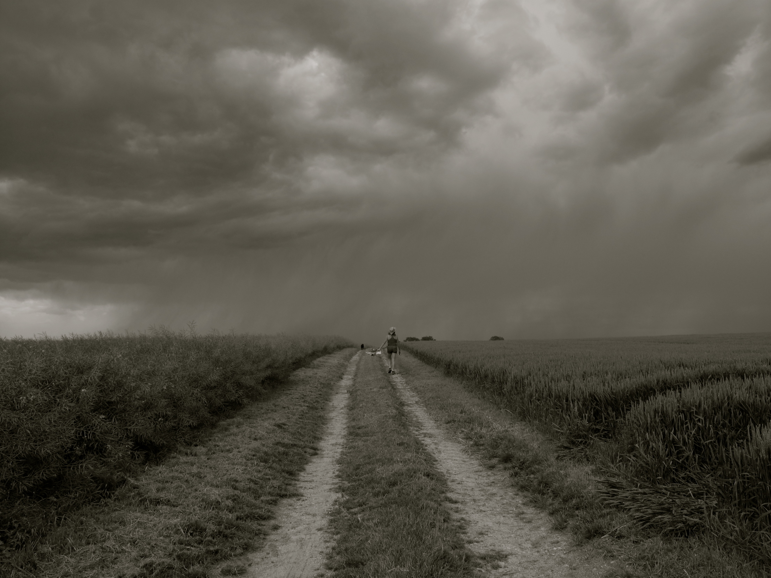 A lightning storm coming on while we are hiking through the wheat fields, Auvergne