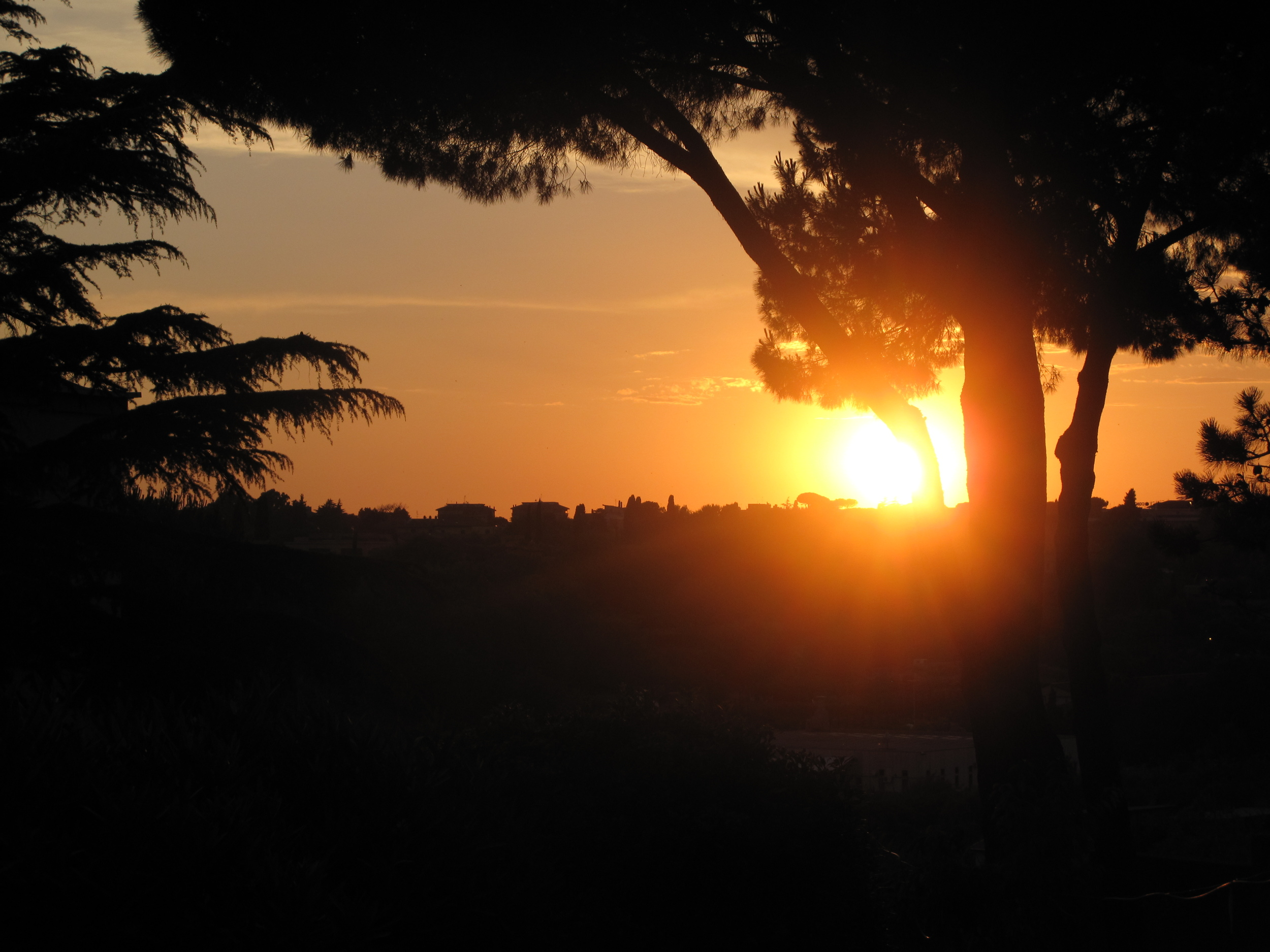 Sunset in Rome over a nunnery and the trees