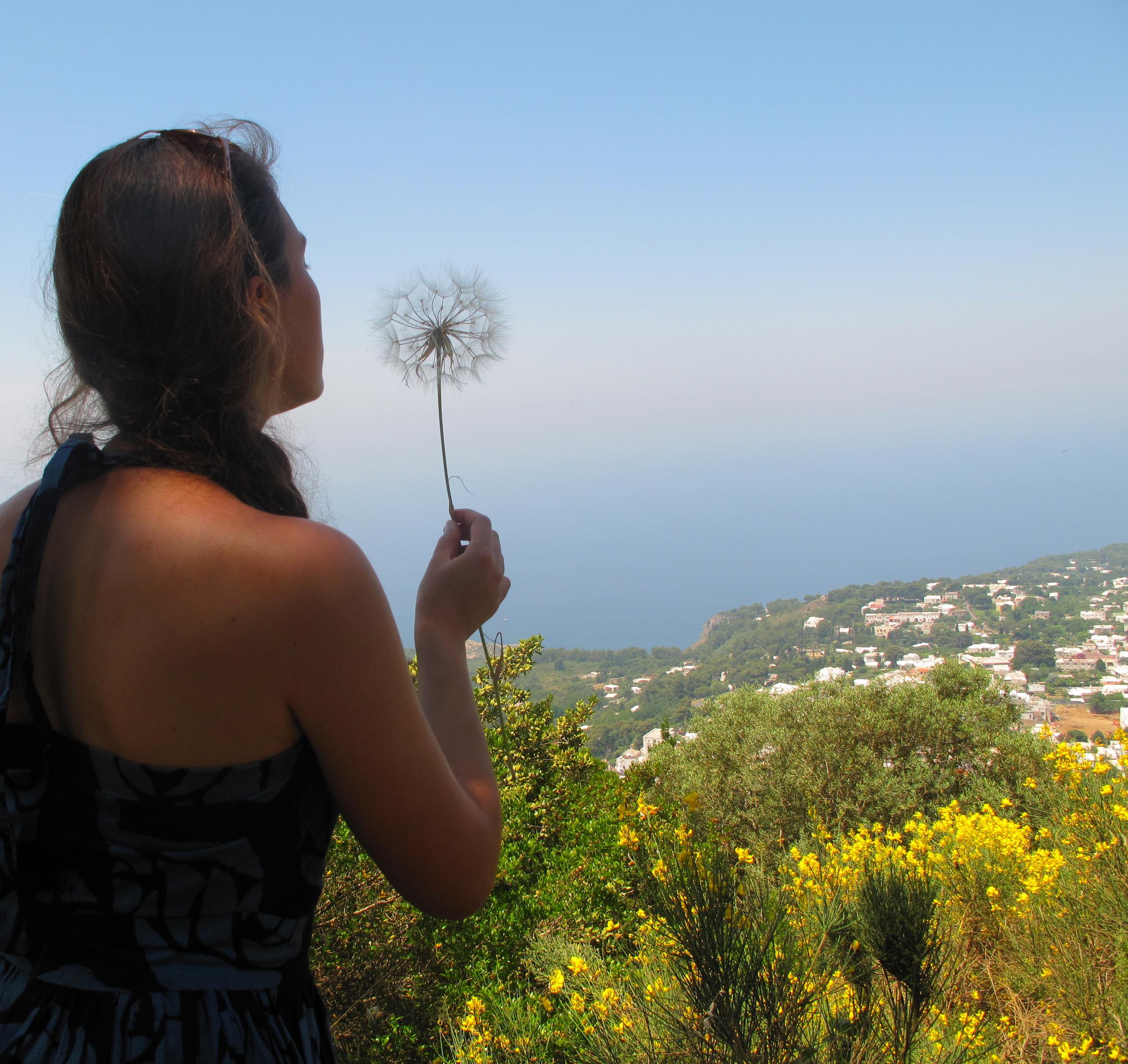 Wishing on a giant dandelion clock