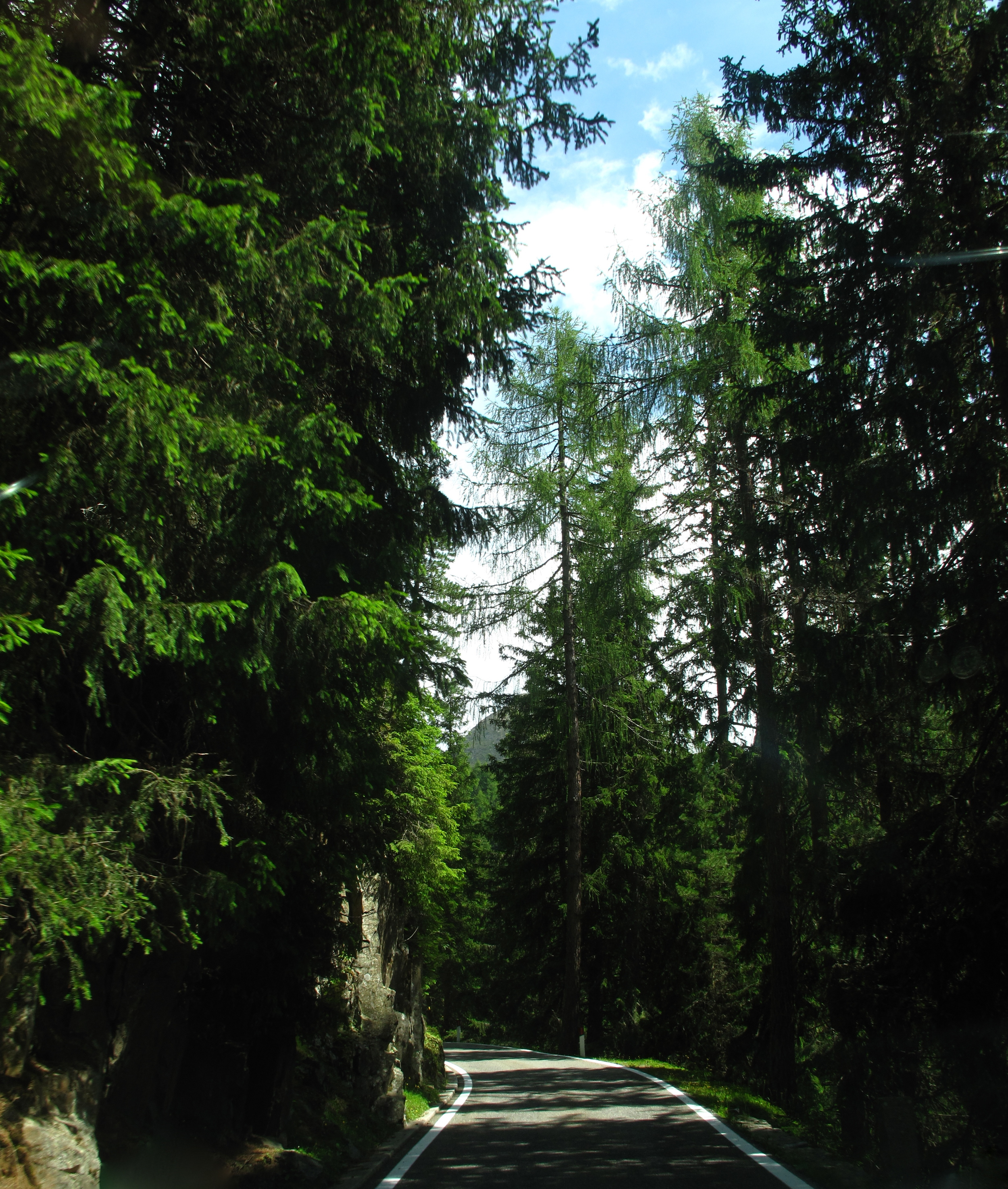 The road into the Tyrol Valley in Austria - a one lane road in the green mountains.