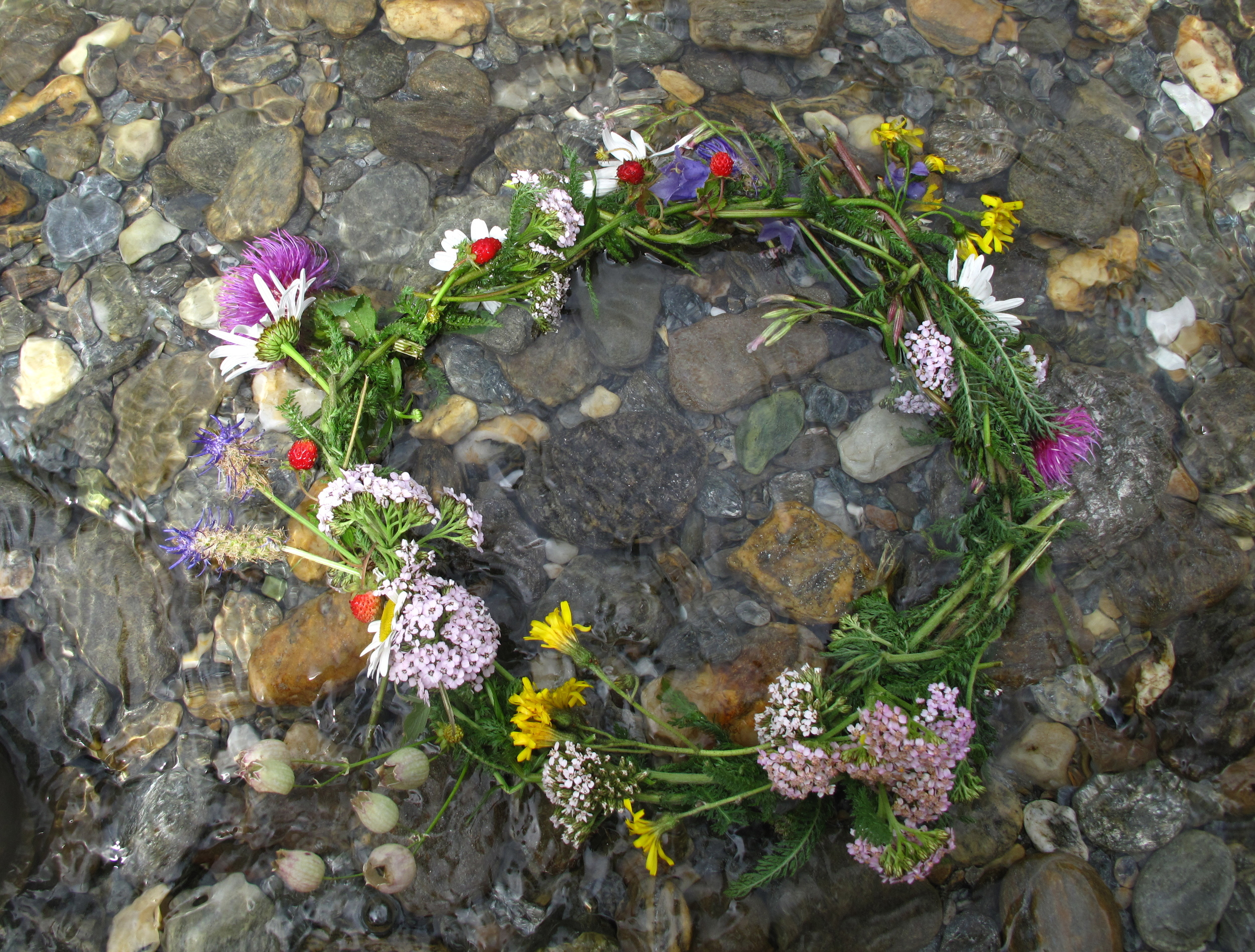 A flower crown of wild flowers and wild strawberries, floating on a crystal clear river.