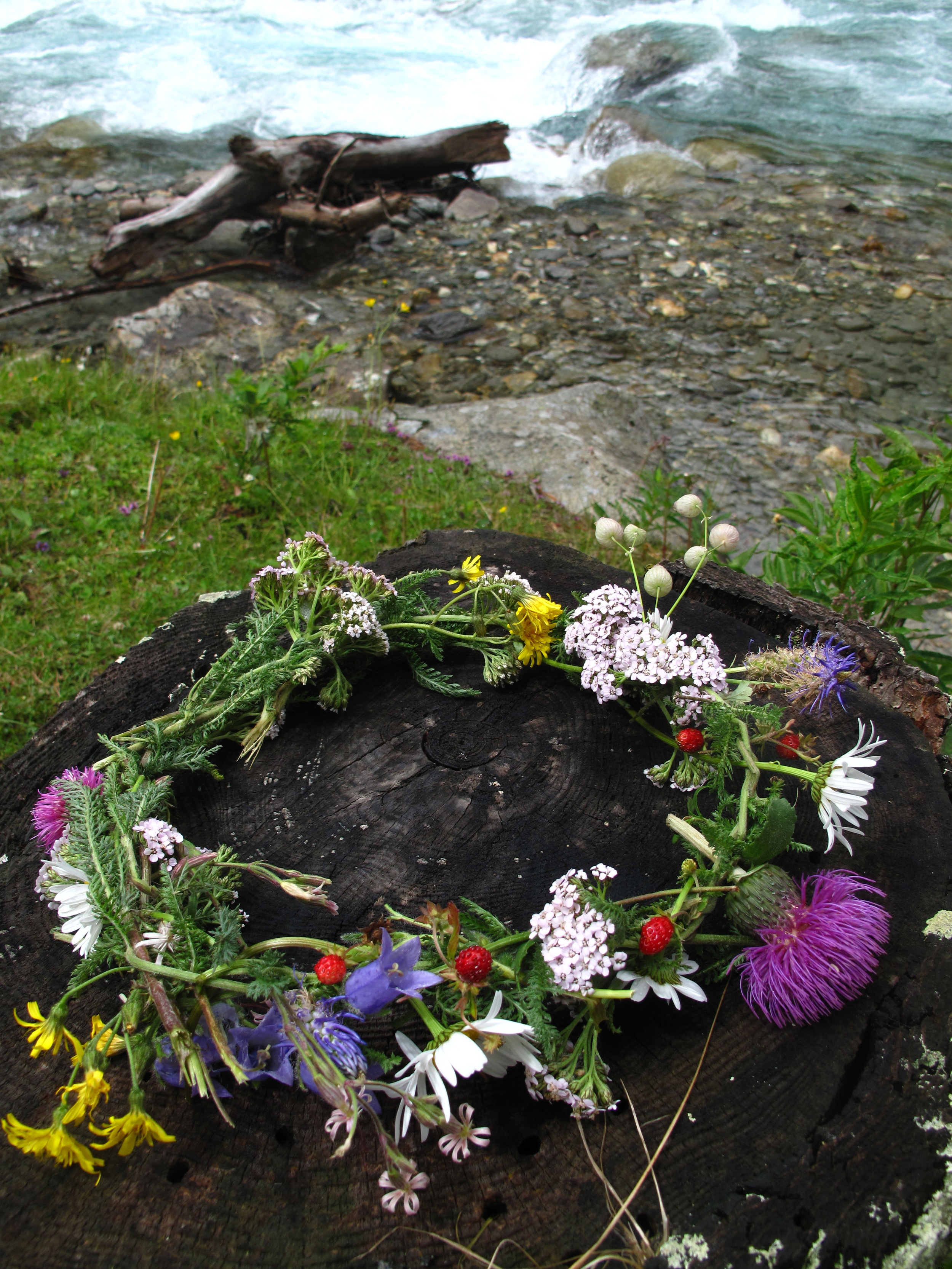 Flower crown of wildflowers and strawberries sitting on a burnt log