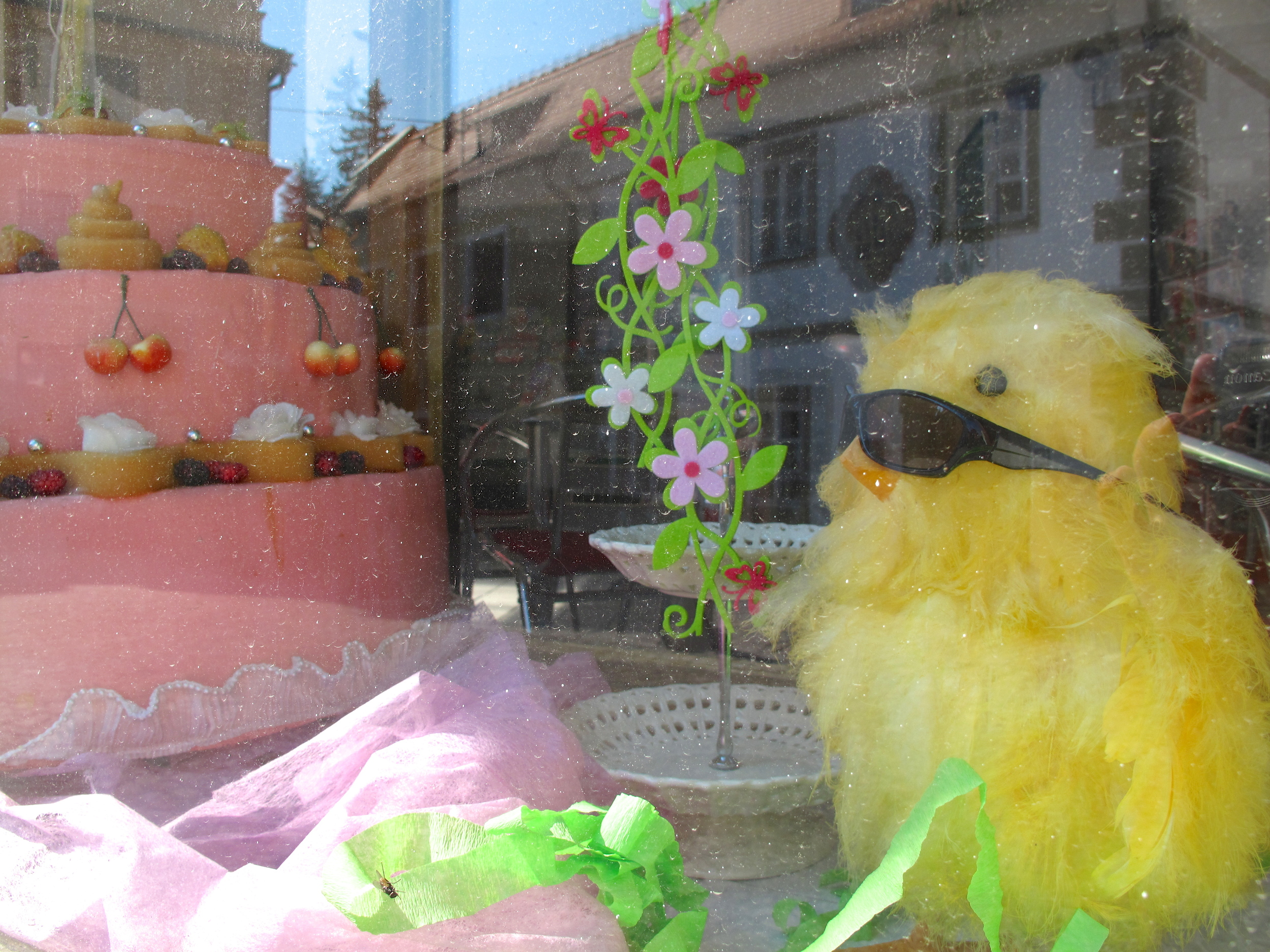 Odd window display in the Czech Republic - with a small chicken in sunglasses and a cake.