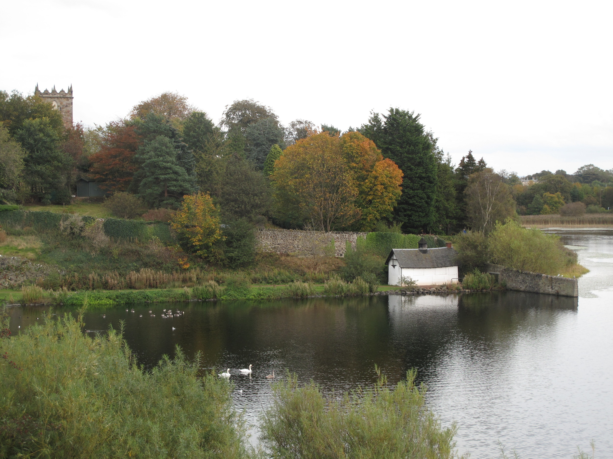 Duddingston Loch - lake in autumn.