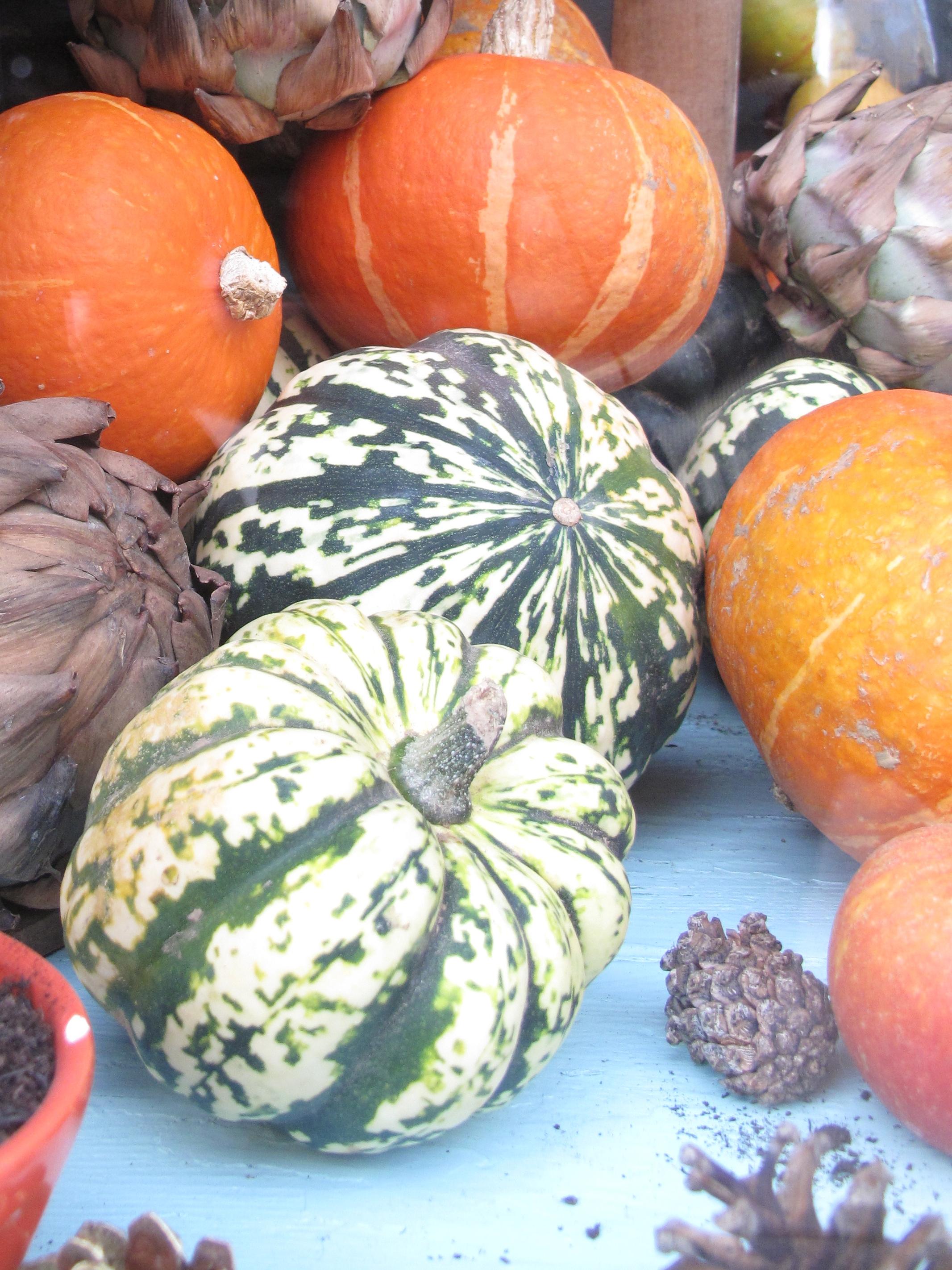 Pumpkins in green and yellow and orange -Love Crumbs window display.