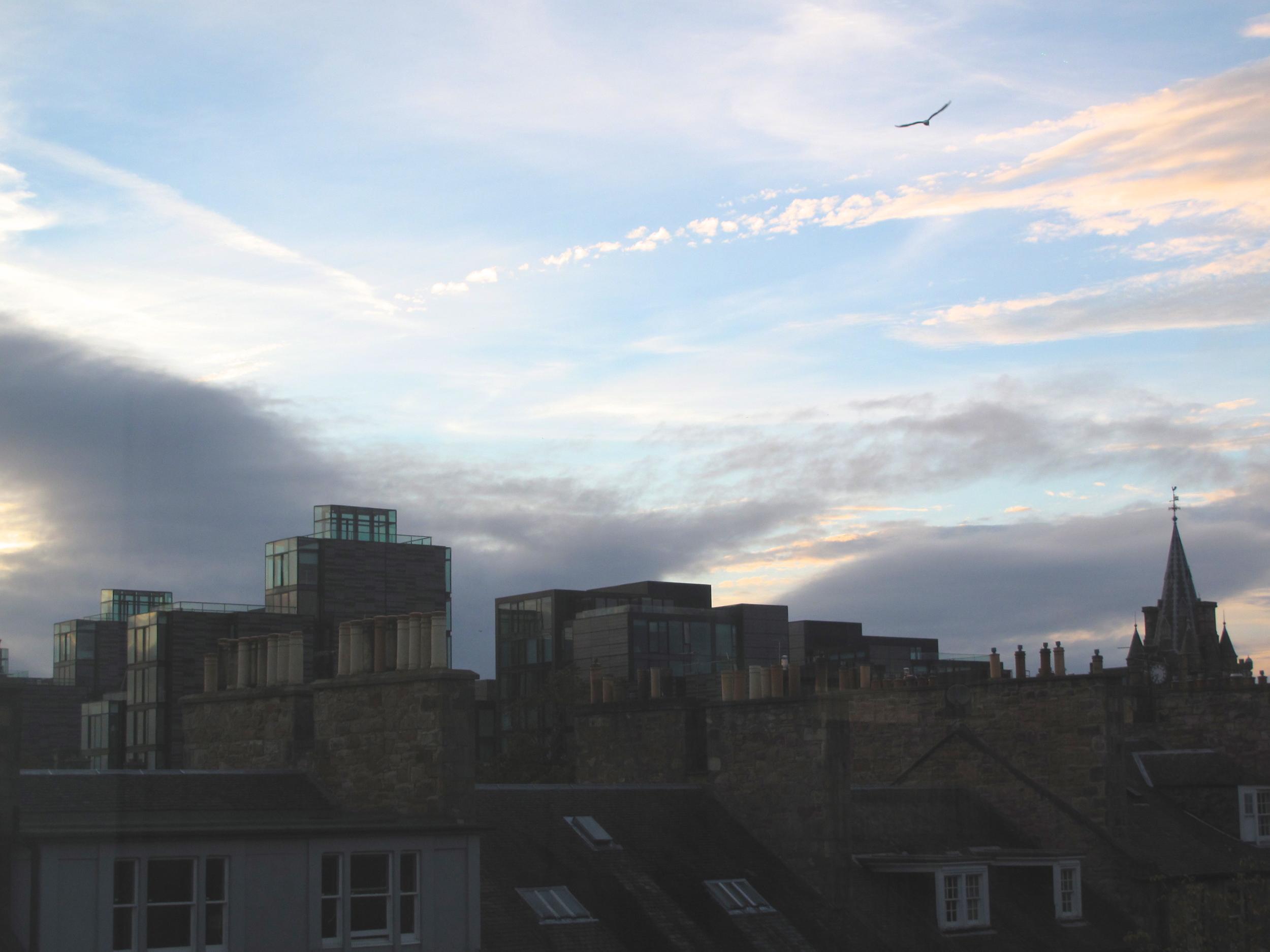 Edinburgh skyline from the University Library, at dusk.