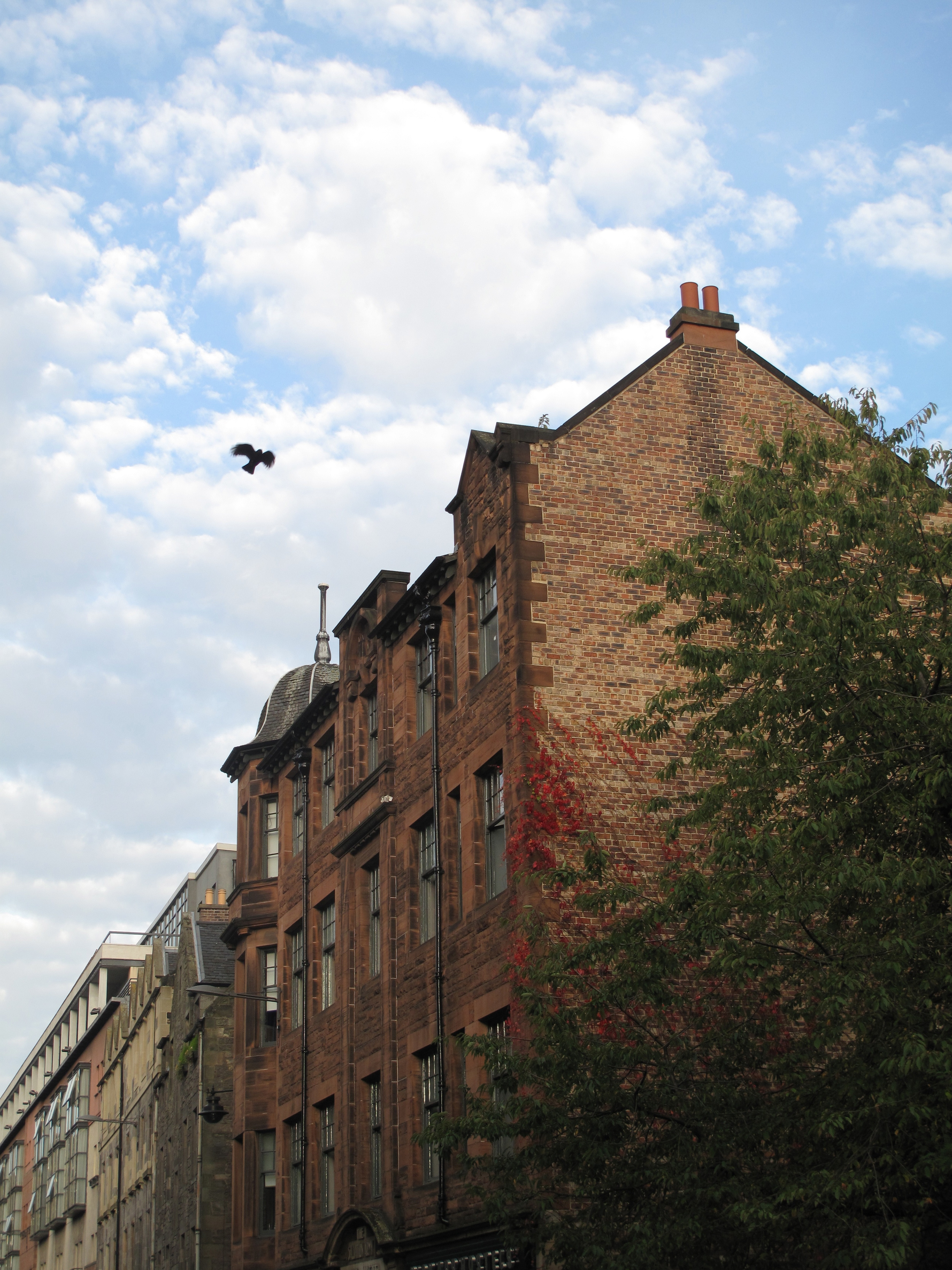 Blue skies and brick houses and red creeping vines in autumn. Edinburgh.