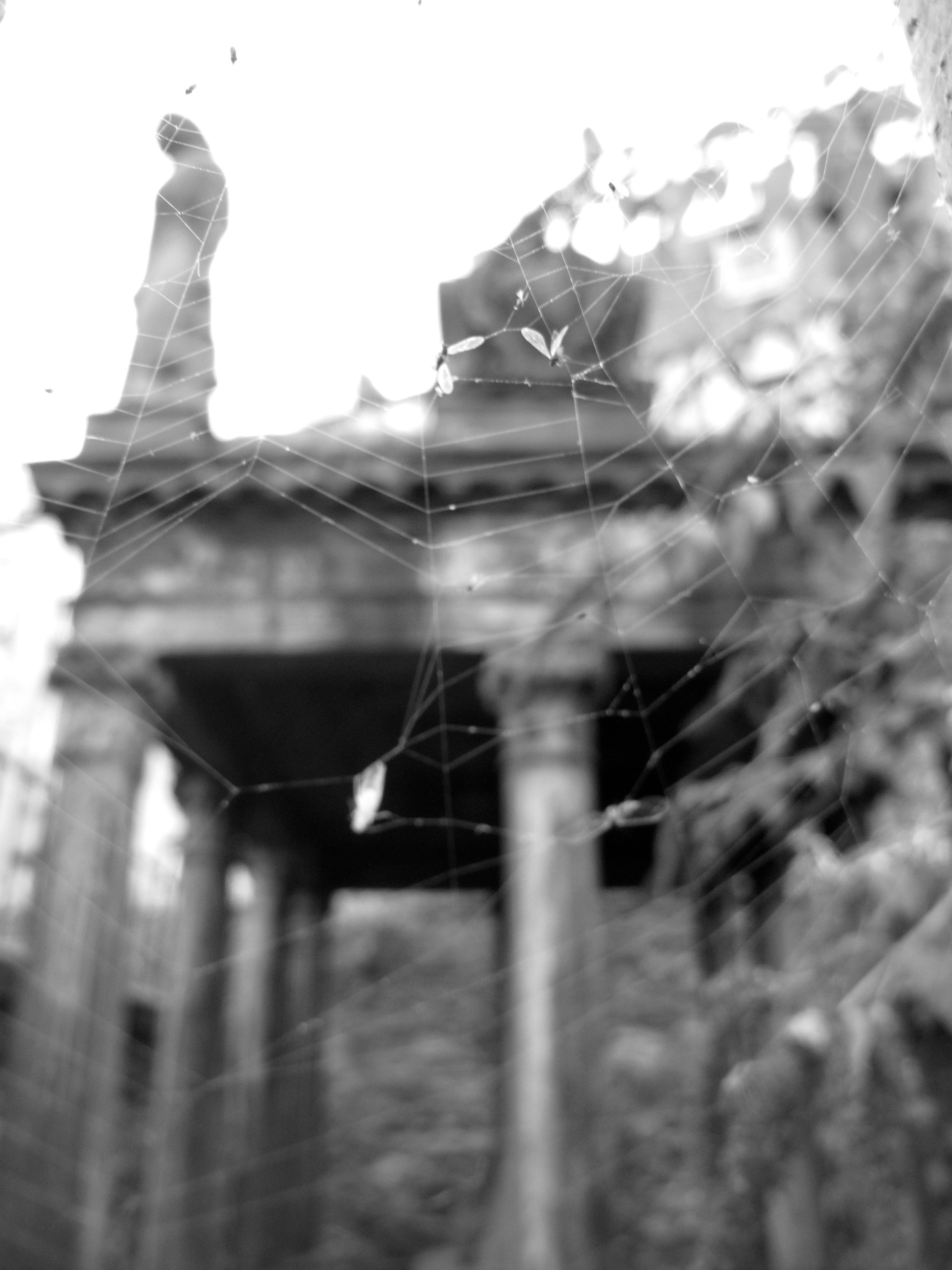 Spider webs and tombs at Greyfriars - black and white photography.