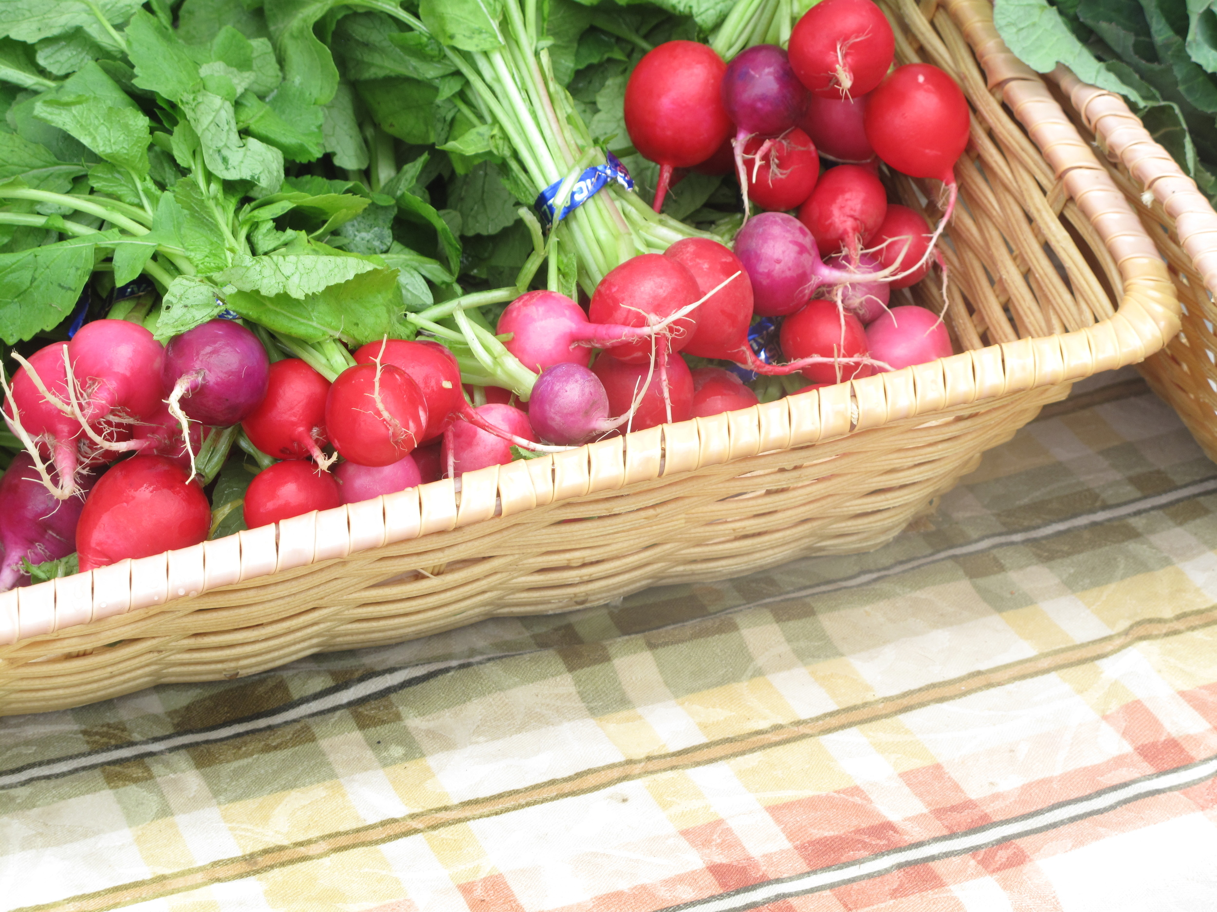 Homegrown radishes at the Fremont market Seattle.