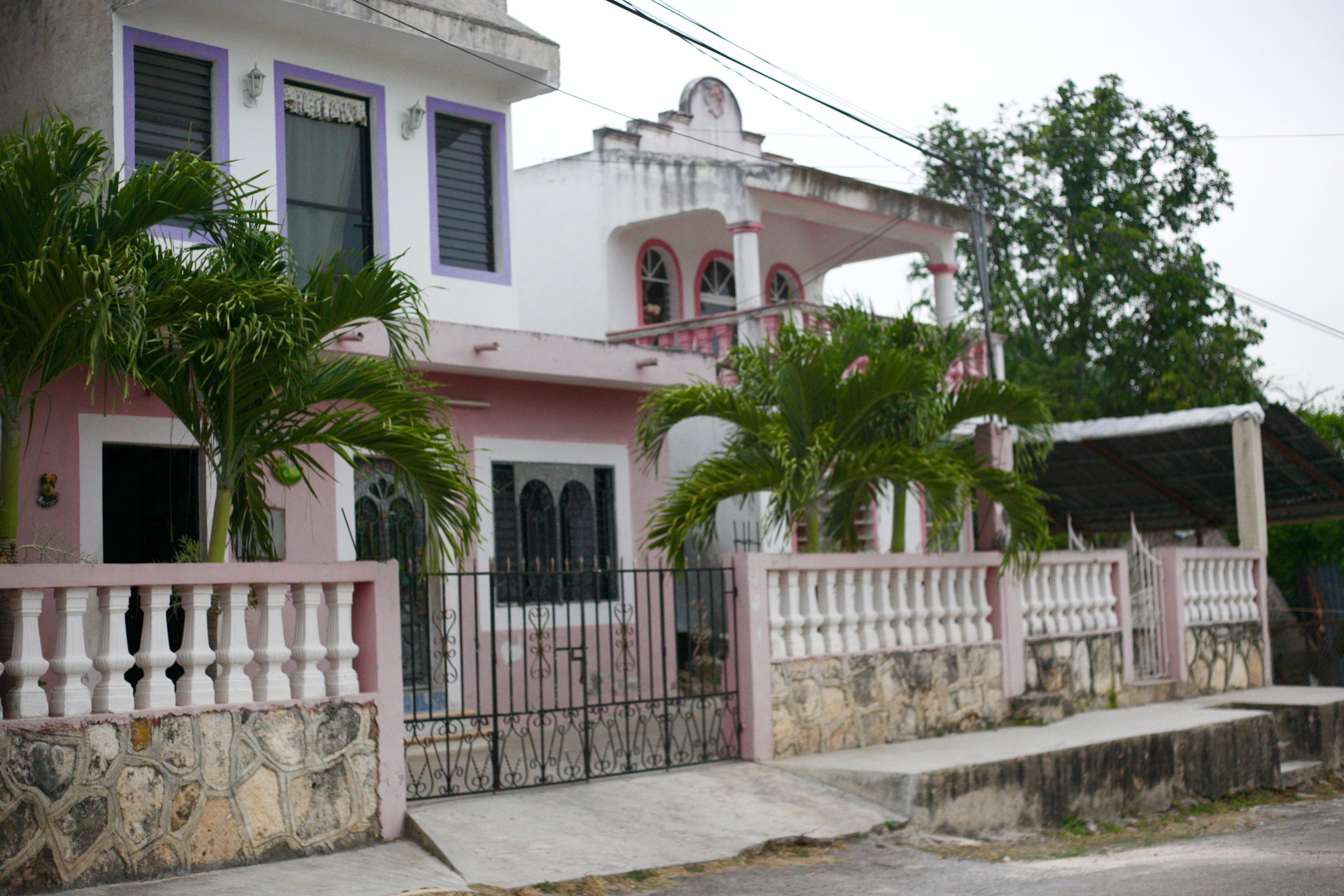 Pink concrete houses and palm trees in Mexico.
