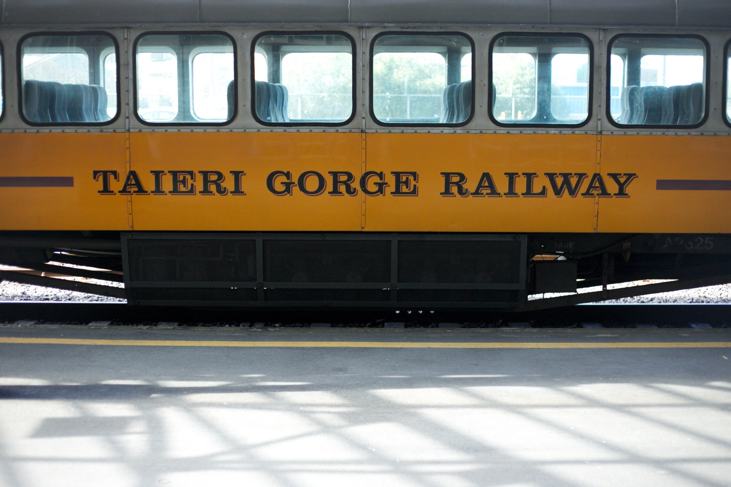 The Taieri Gorge train.