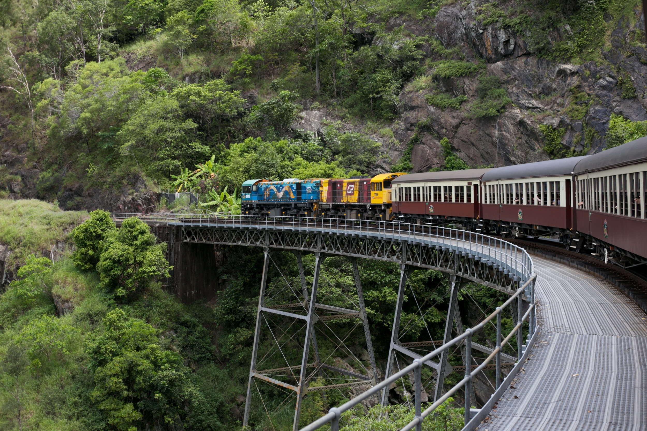 The Kuranda scenic train driving through the rainforest.