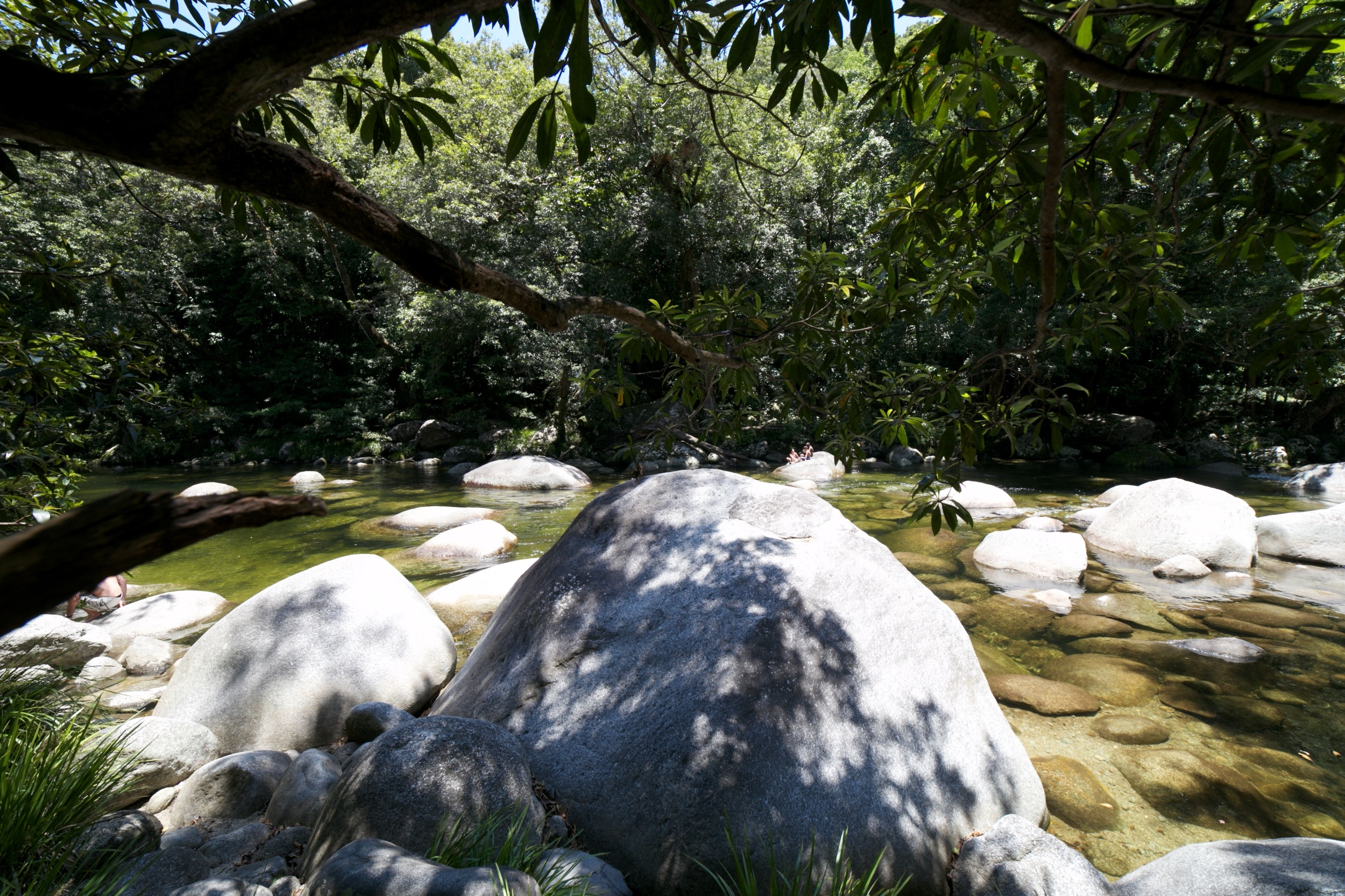 Boulders in the river at the Mossman Gorge.