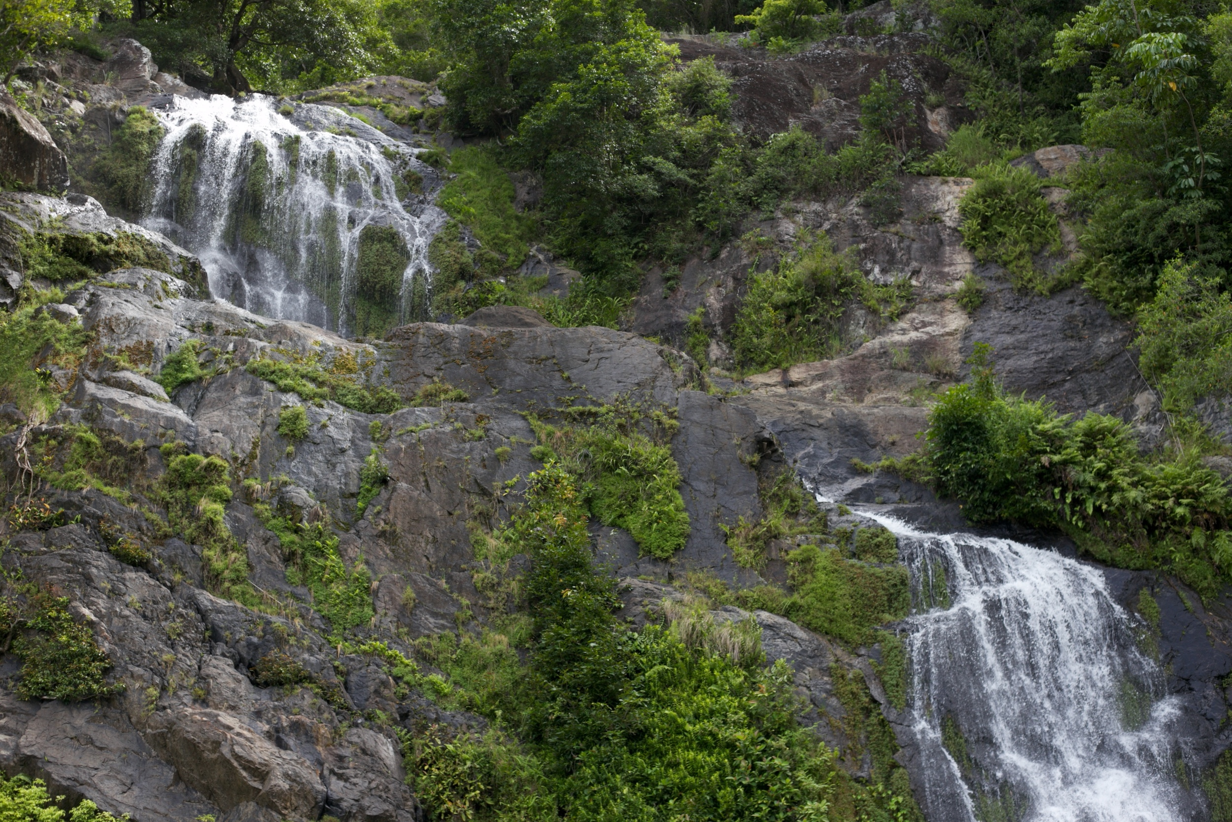 Stony Creek waterfall in the Kuranda area.