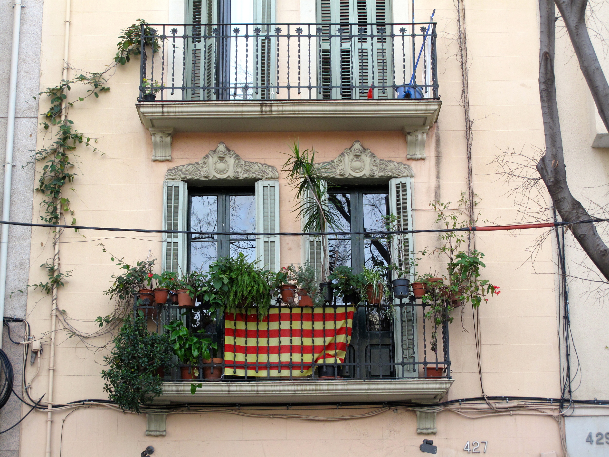 A balcony in Barcelona, covered in plants and sporting the Catalan football flag.