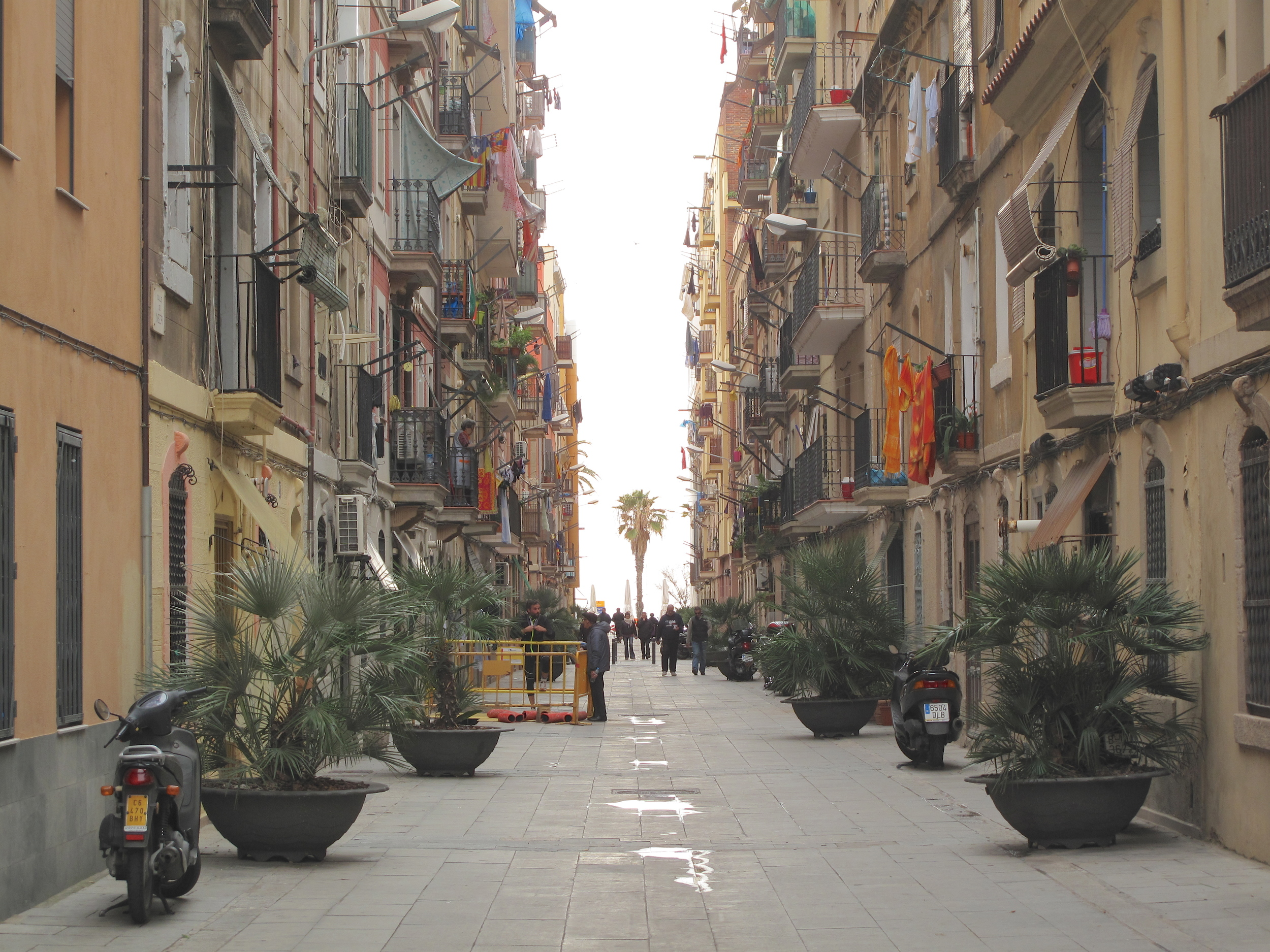 An alleyway in Barcelona, with palm trees and laundry on the balconies.