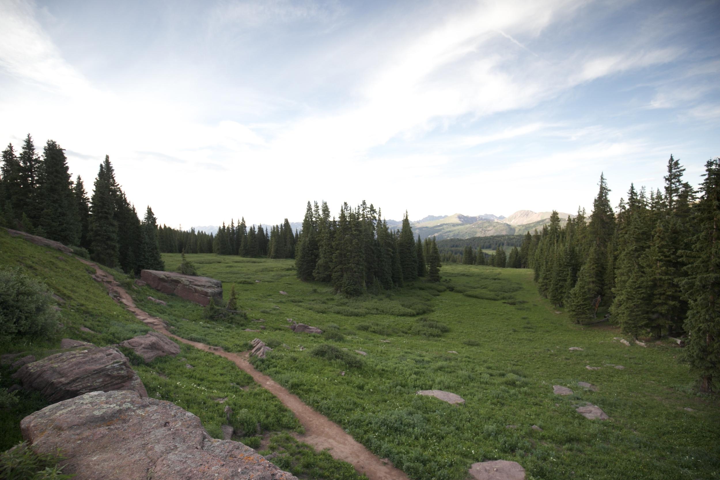 Shrine Pass Trail.